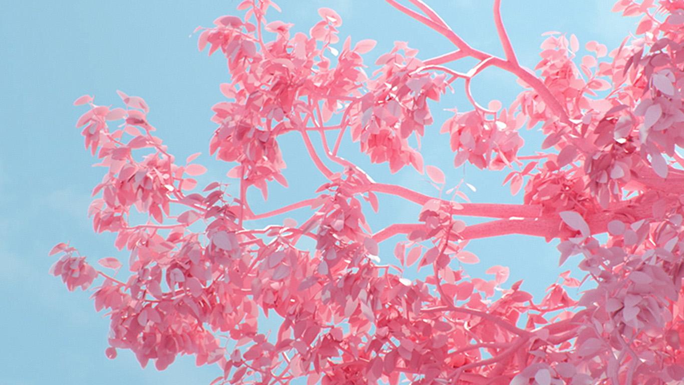 Wallpaper For Laptop Pink