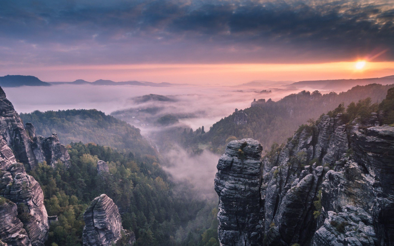 4k Forest Mountain Background - HD Wallpaper