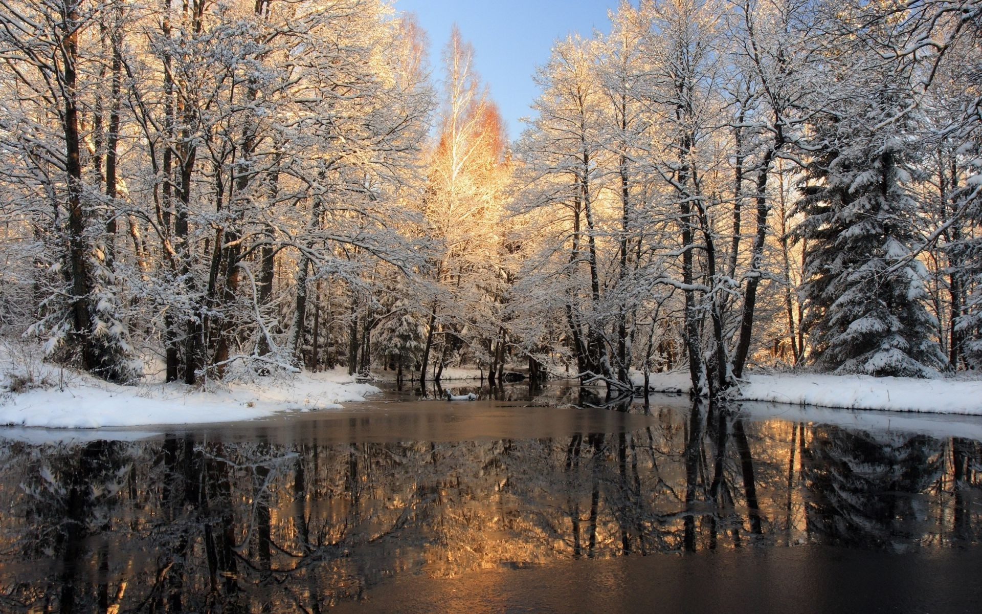 Rivers Ponds And Streams Wood Winter Snow Tree Fall - Nature Oil Paintings Landscapes - HD Wallpaper