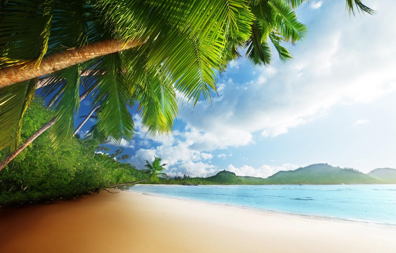 Photo Wallpaper Sand, Sea, Beach, The Sky, The Sun, - Море Песок Пальмы - HD Wallpaper
