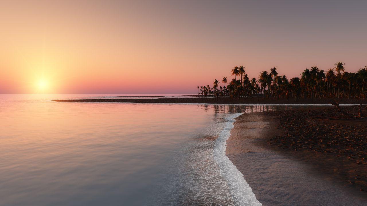 Palm Tree Beach Sunset - HD Wallpaper