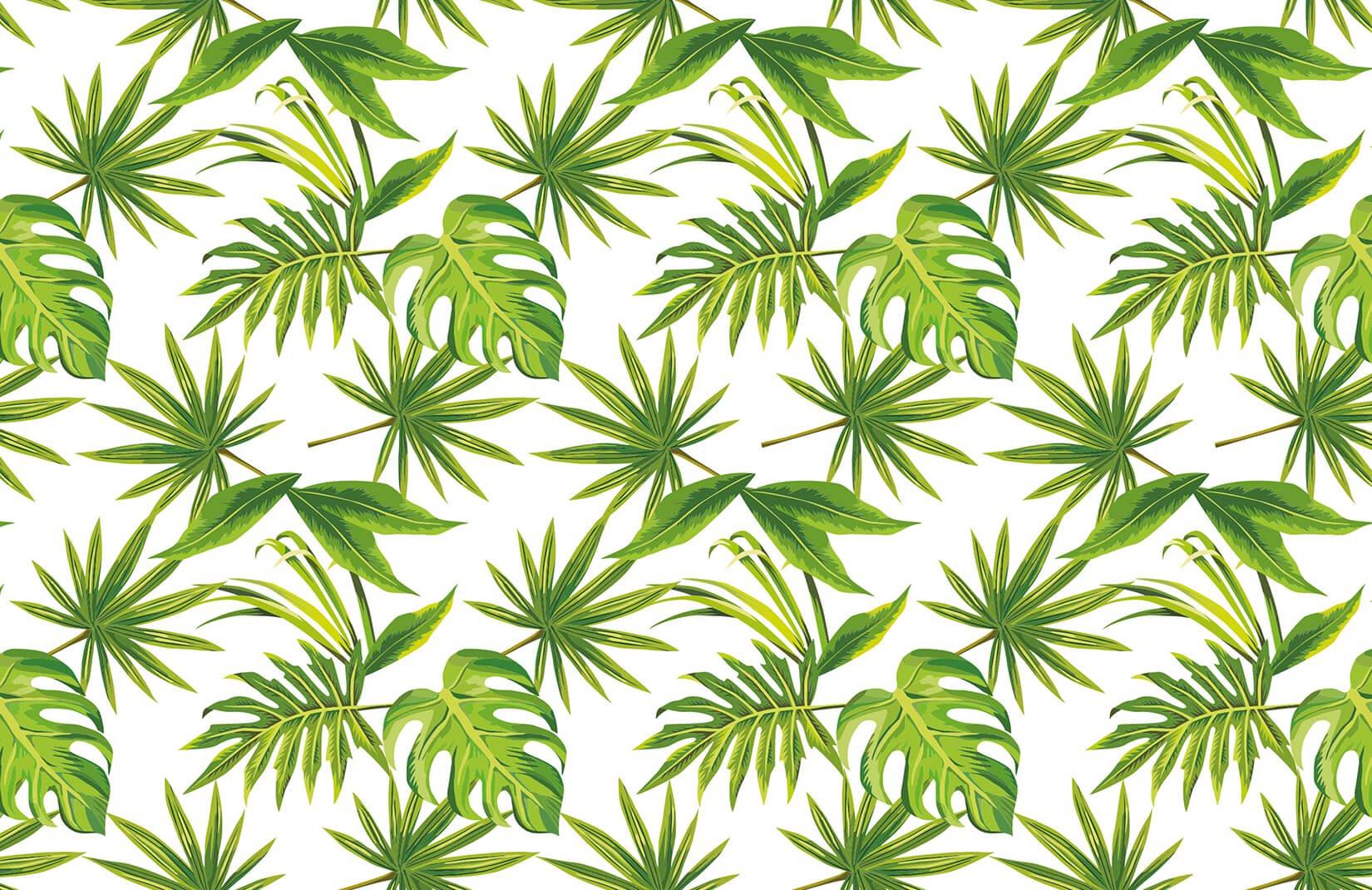 Wallpaper Tropical Leaves Print Wallpaper Murals Paradise - Tropical Leaves - HD Wallpaper