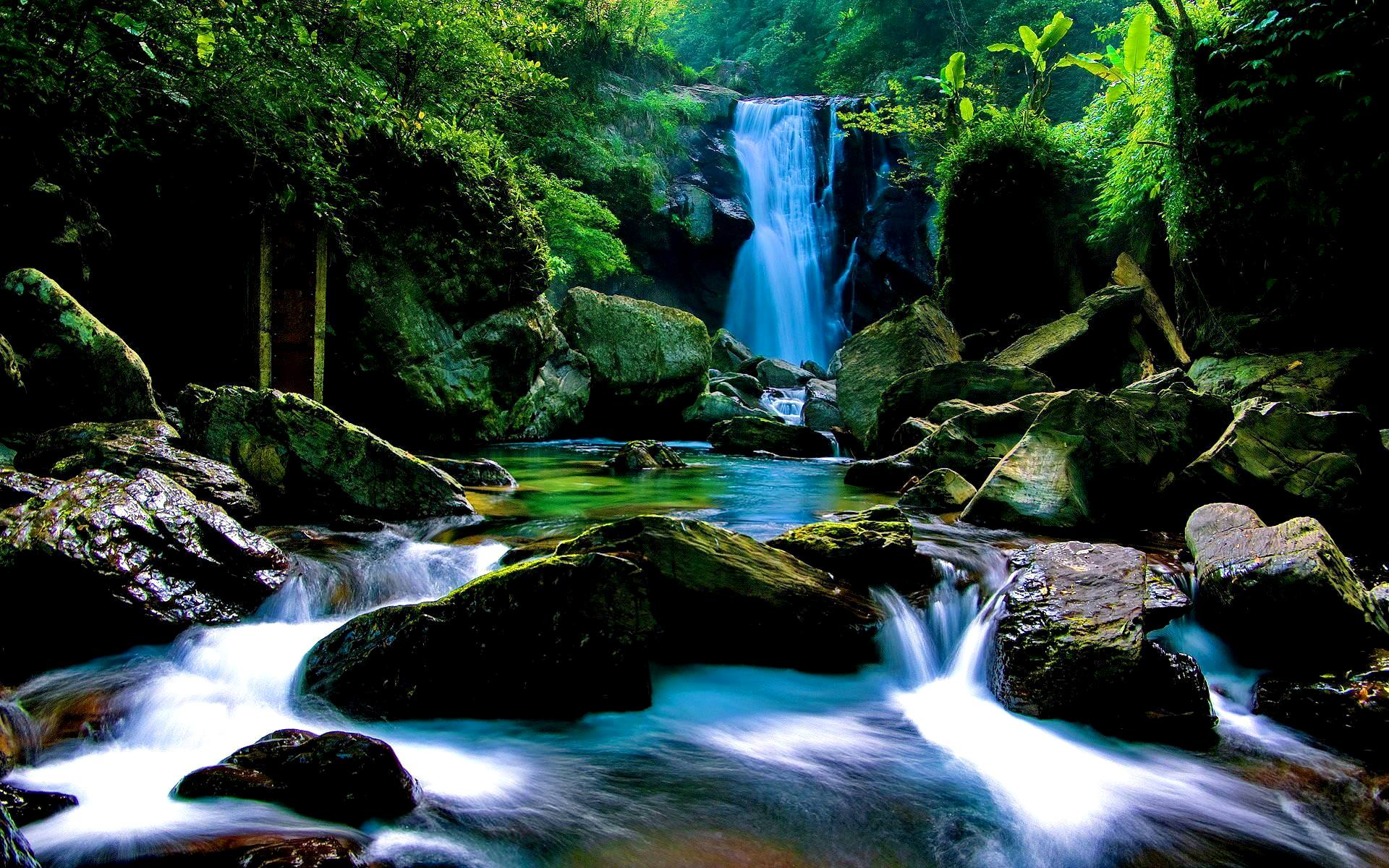 Download Forest Waterfall Wallpaper For Iphone 6 Wallpaper Forest Waterfall Background 1920x1200 Wallpaper Teahub Io
