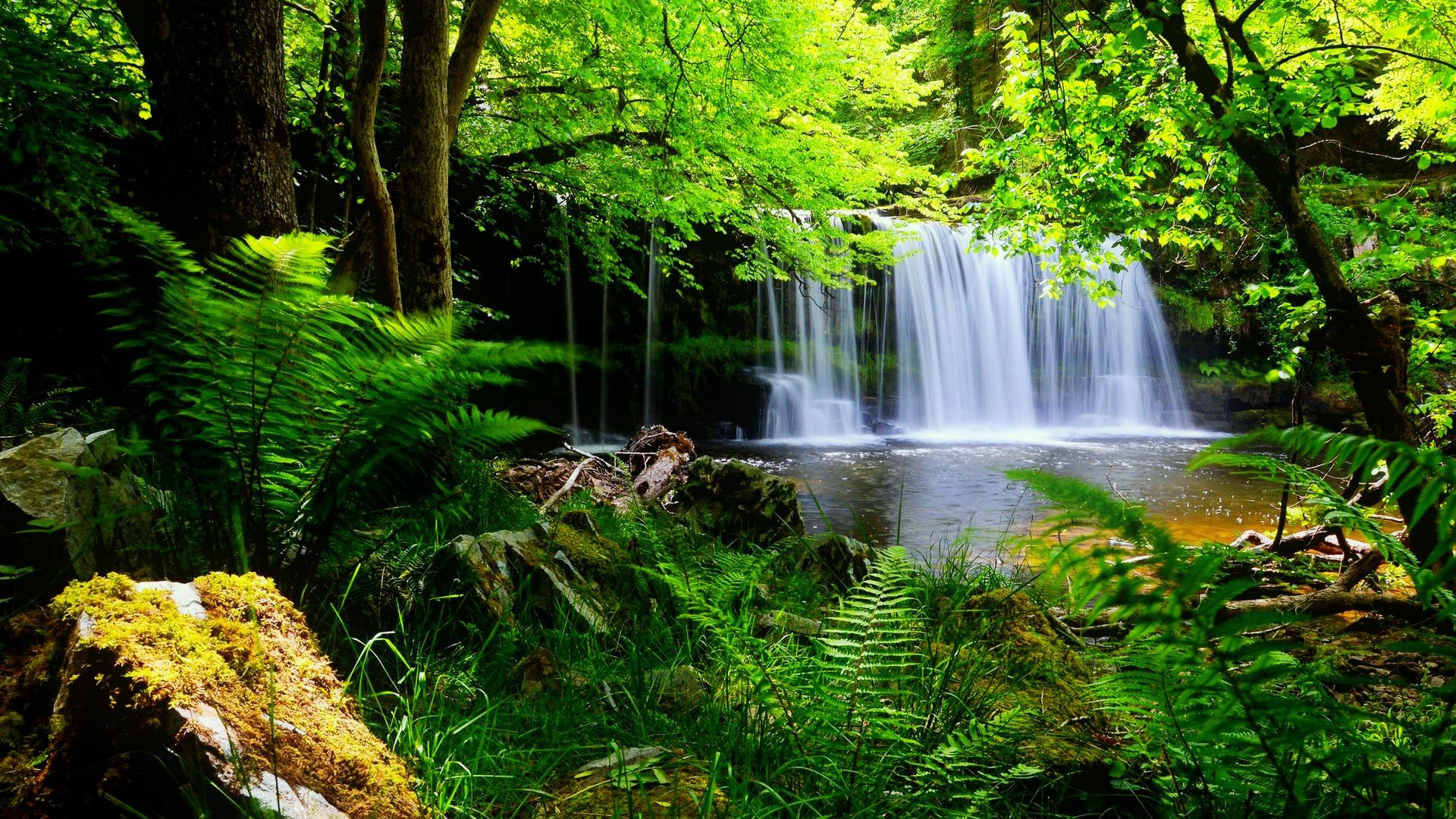 Hd Nature Wallpapers, Landscape, Green, Cute Desktop - Waterfall Desktop Backgrounds - HD Wallpaper