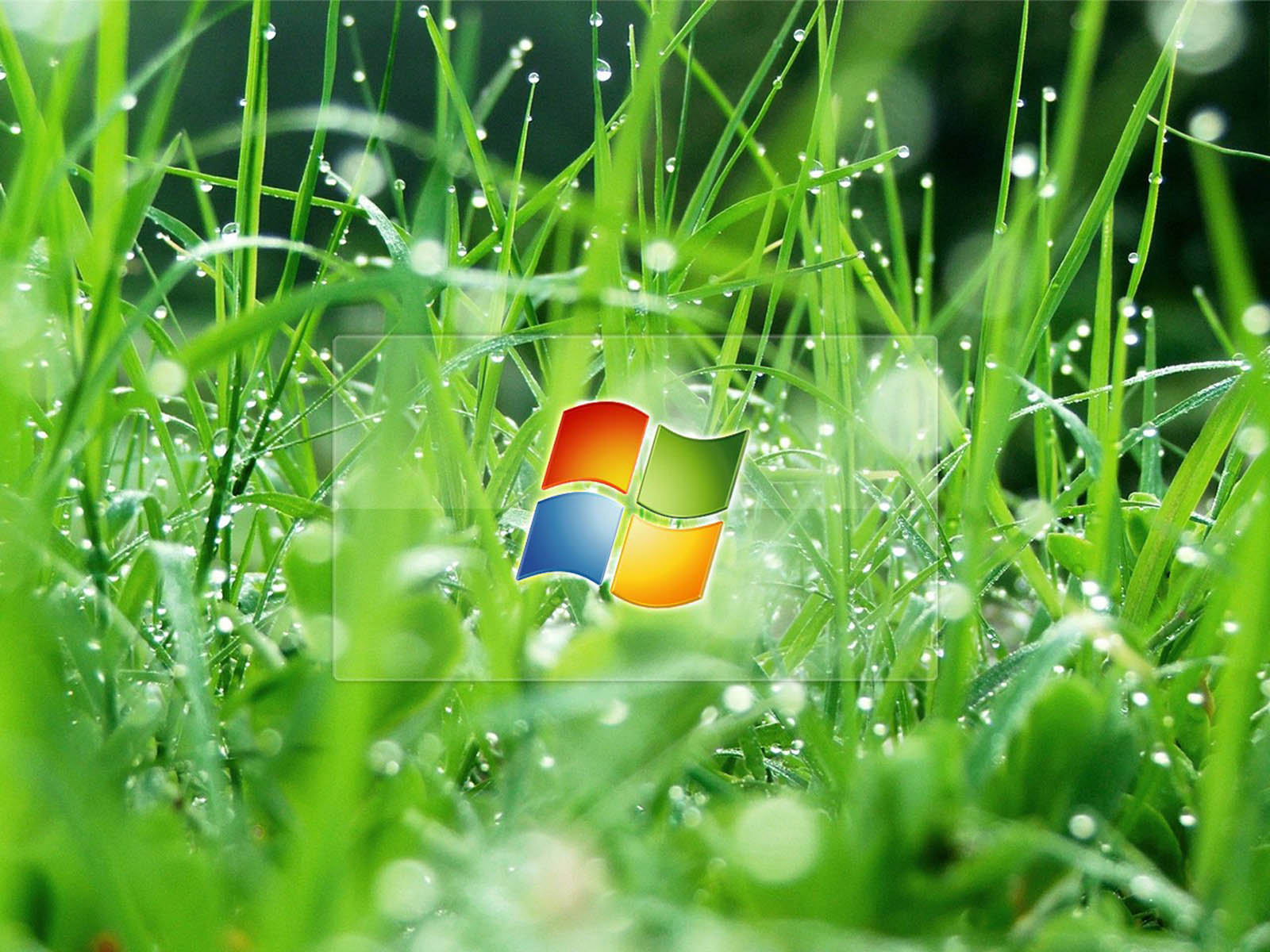 Windows Vista 3d Wallpaper Download For Desktop 1280x1024 Wallpaper Teahub Io