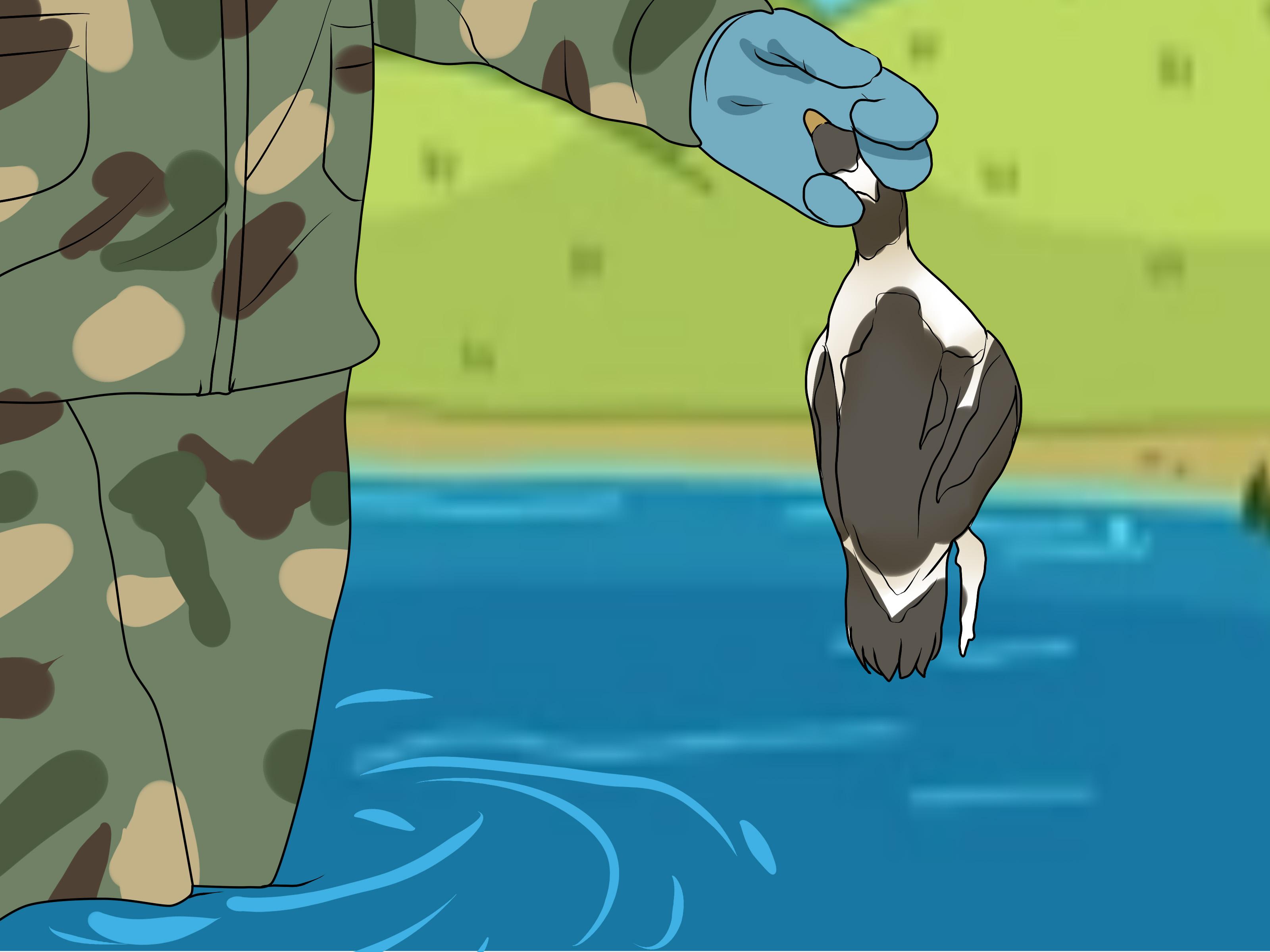 Image Titled Start Duck Hunting Step - Cartoon - HD Wallpaper