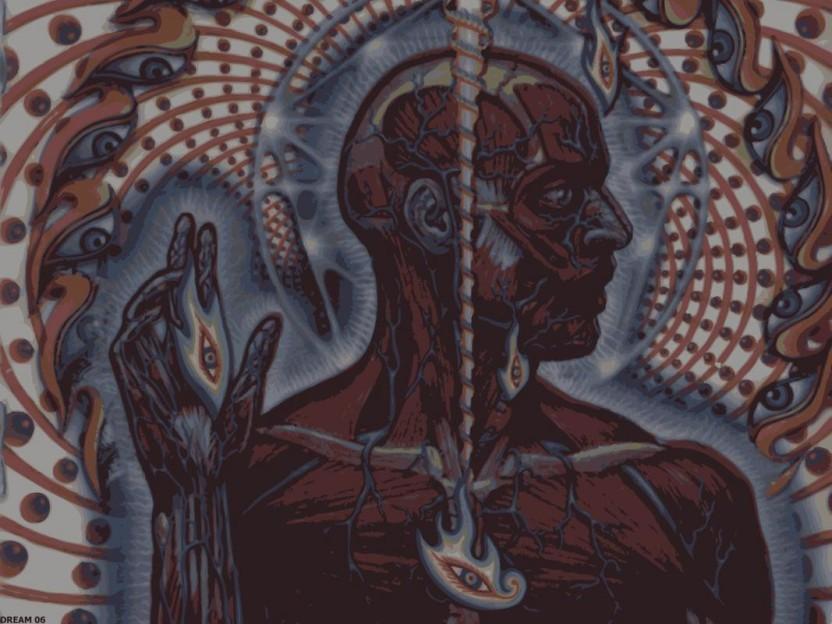 Tool Lateralus 832x624 Wallpaper Teahub Io