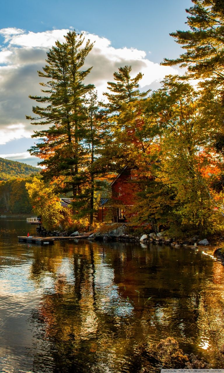 New England Fall Foliage 4k Hd Desktop Wallpaper New England Fall Hd 768x1280 Wallpaper Teahub Io