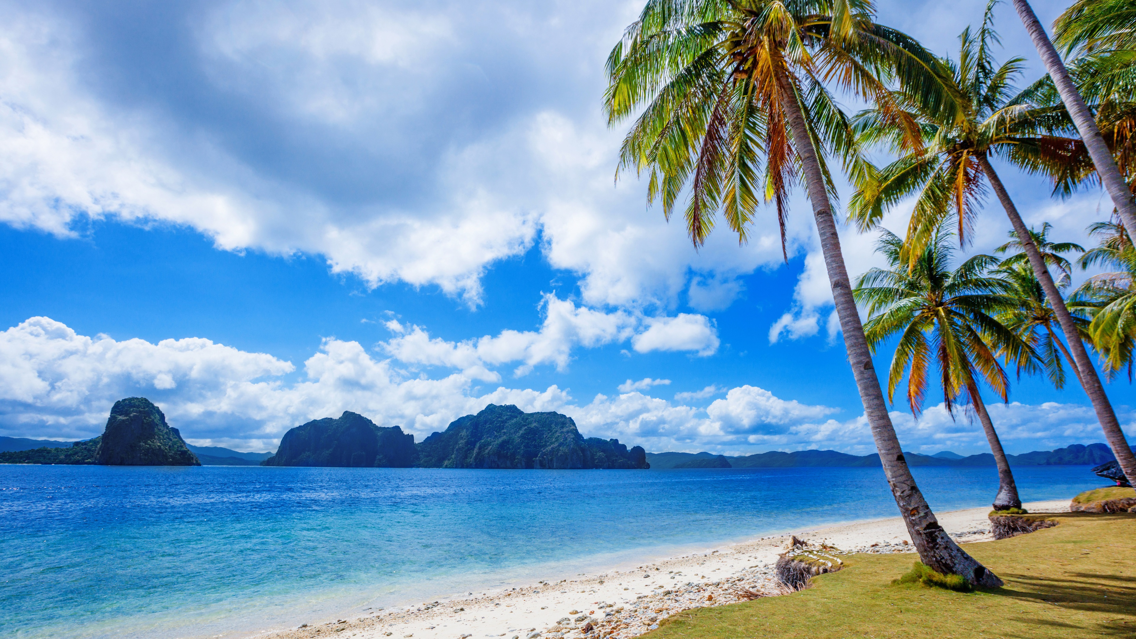 Wallpaper Philippines, Tropics, Palm Trees, Sea - Cloth Beach Wedding Backdrop - HD Wallpaper