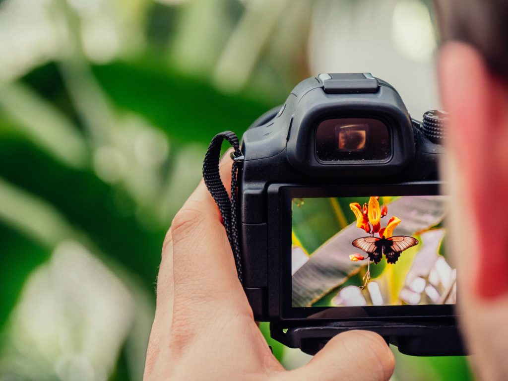 Dslr Camera Picture Quality - HD Wallpaper