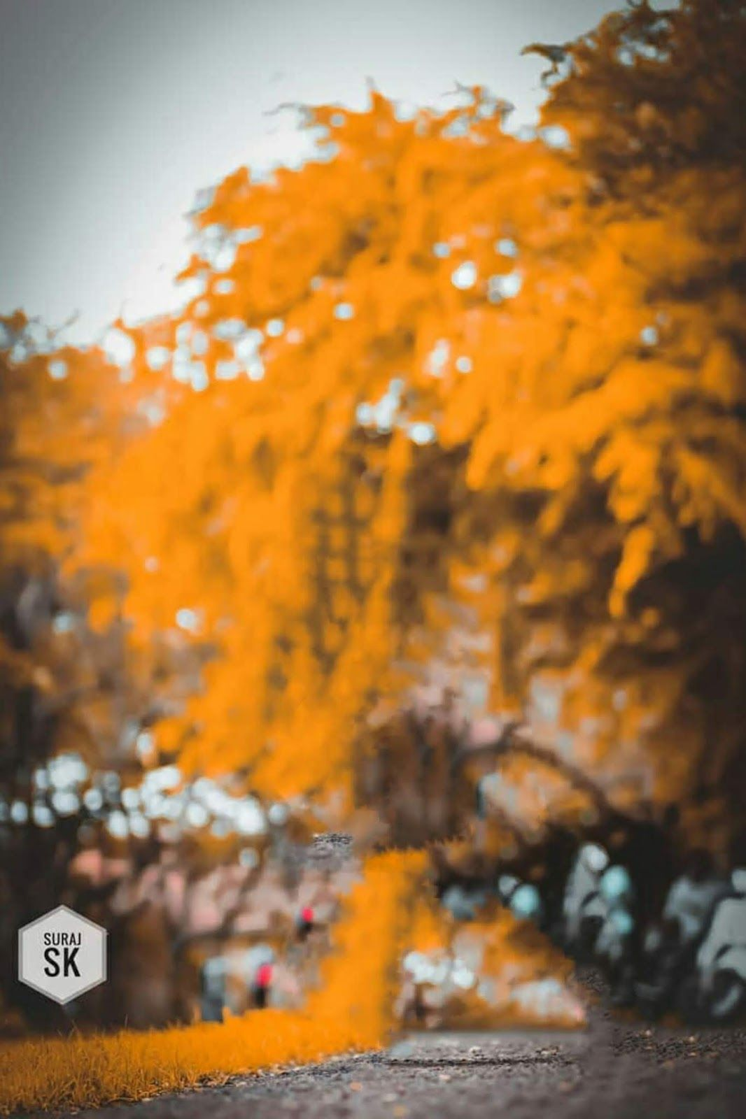 Aqua And Orange Preset Image Download 1066x1600 Wallpaper Teahub Io
