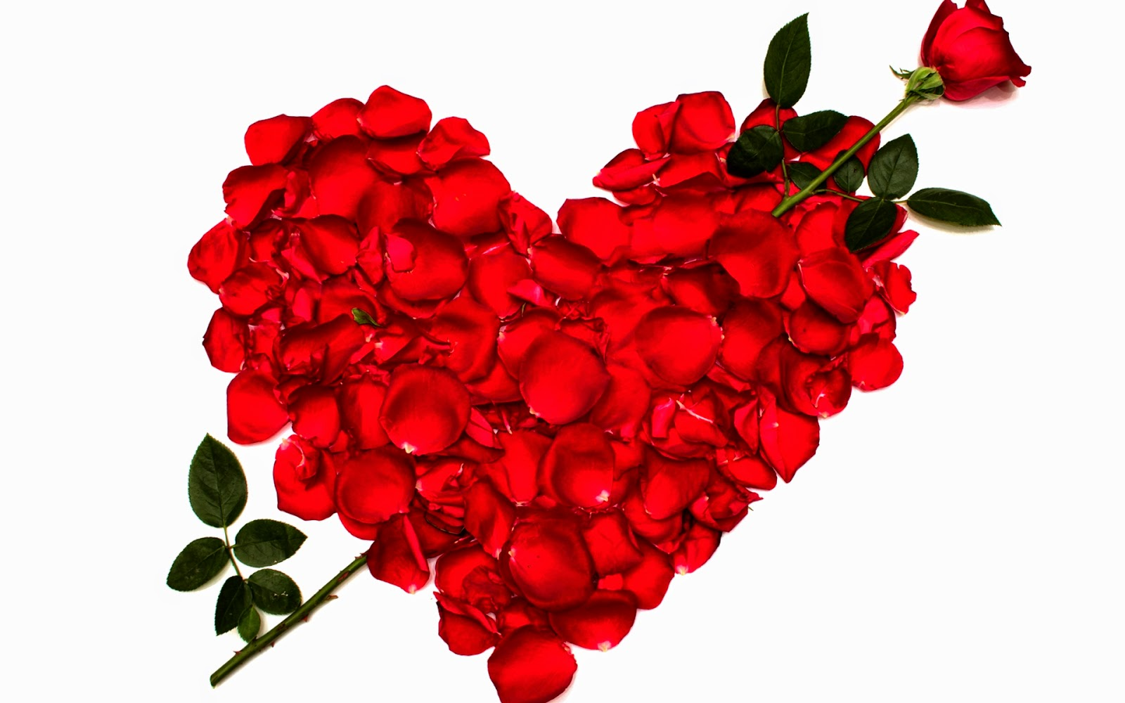 Red Heart Love Live Wallpaper Android Apps On Google - Happy Rose Day My Love - HD Wallpaper