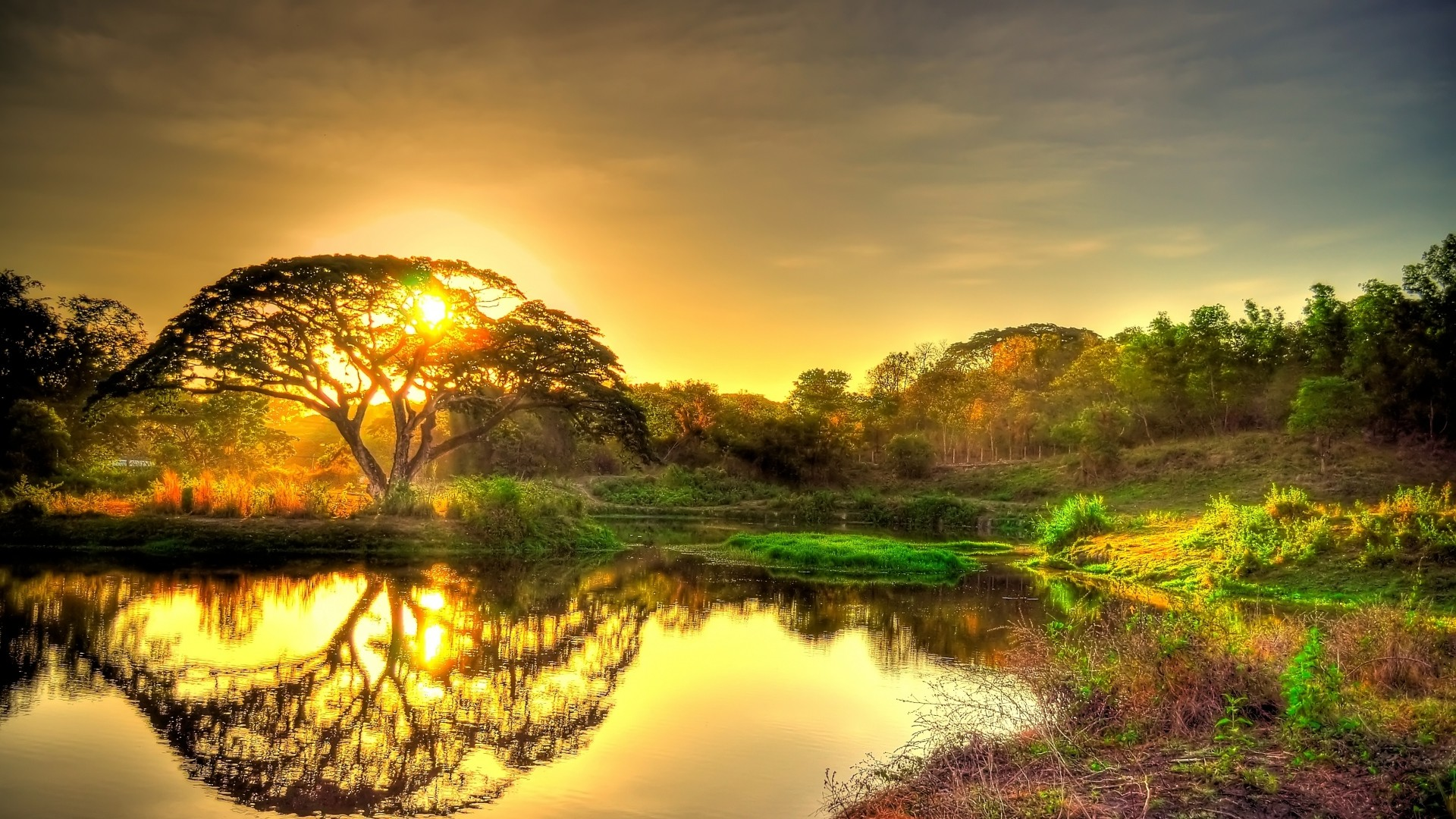1920x1080, Backgrounds Of Nature   Data Id 145096   - Hd Landscape Wallpapers 1080p - HD Wallpaper