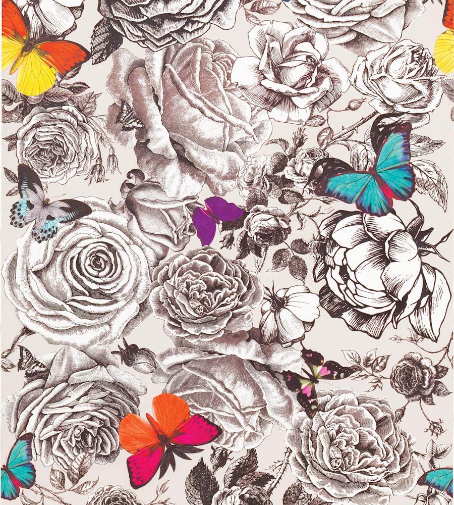 Osborne And Little Butterfly Garden - HD Wallpaper