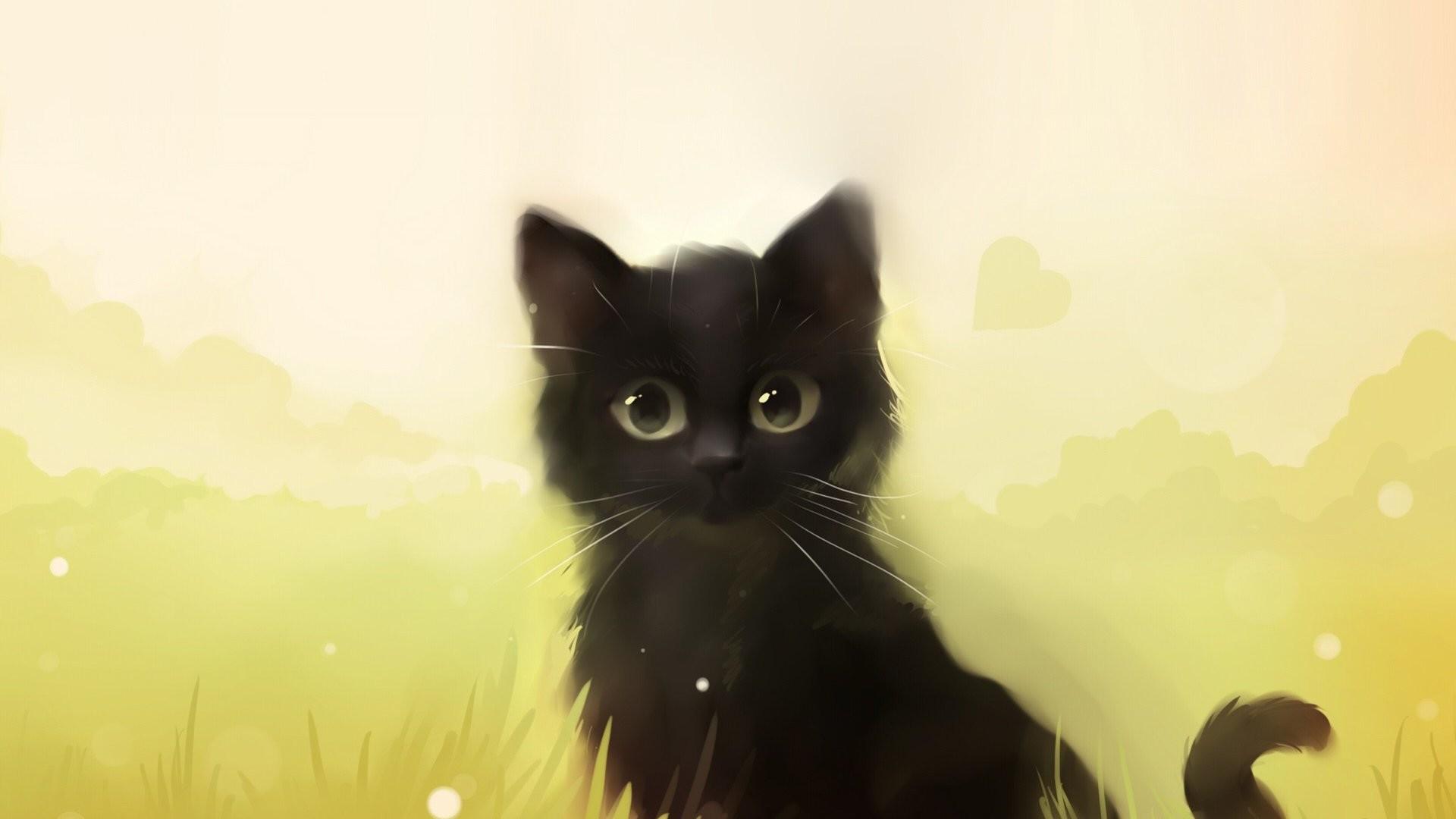 Cute Anime Black Cat 1280x776 Wallpaper Teahub Io
