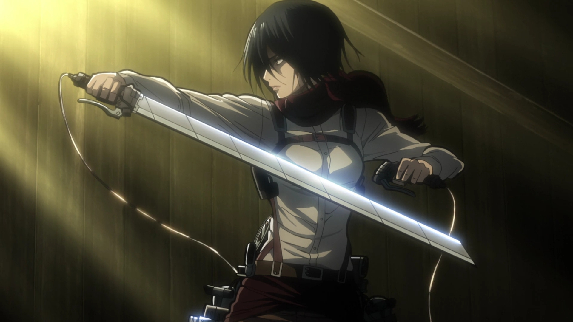 Mikasa Ackerman Hd Background 1920x1080 Wallpaper Teahub Io