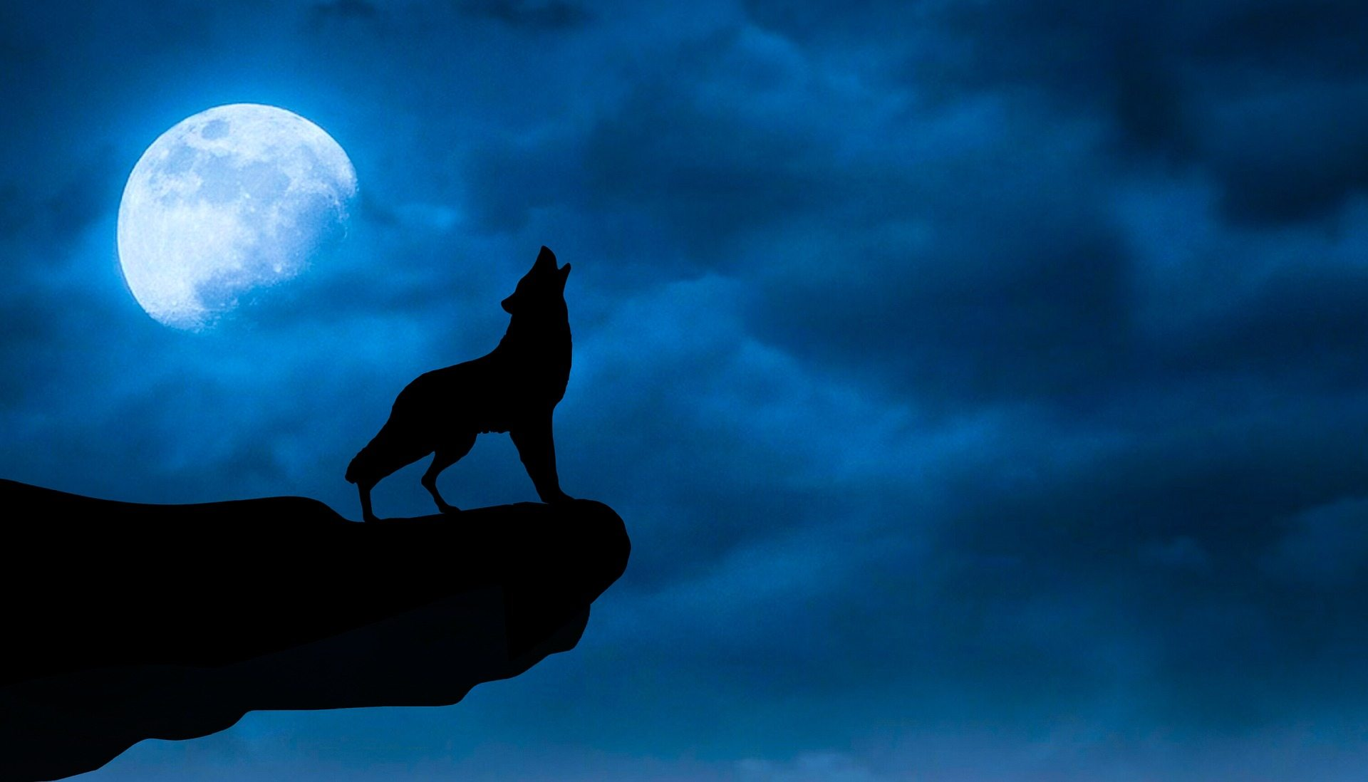 Dark Black Wolf Moon Wallpaper Hd Free Download Night Sky With Wolf 1920x1098 Wallpaper Teahub Io