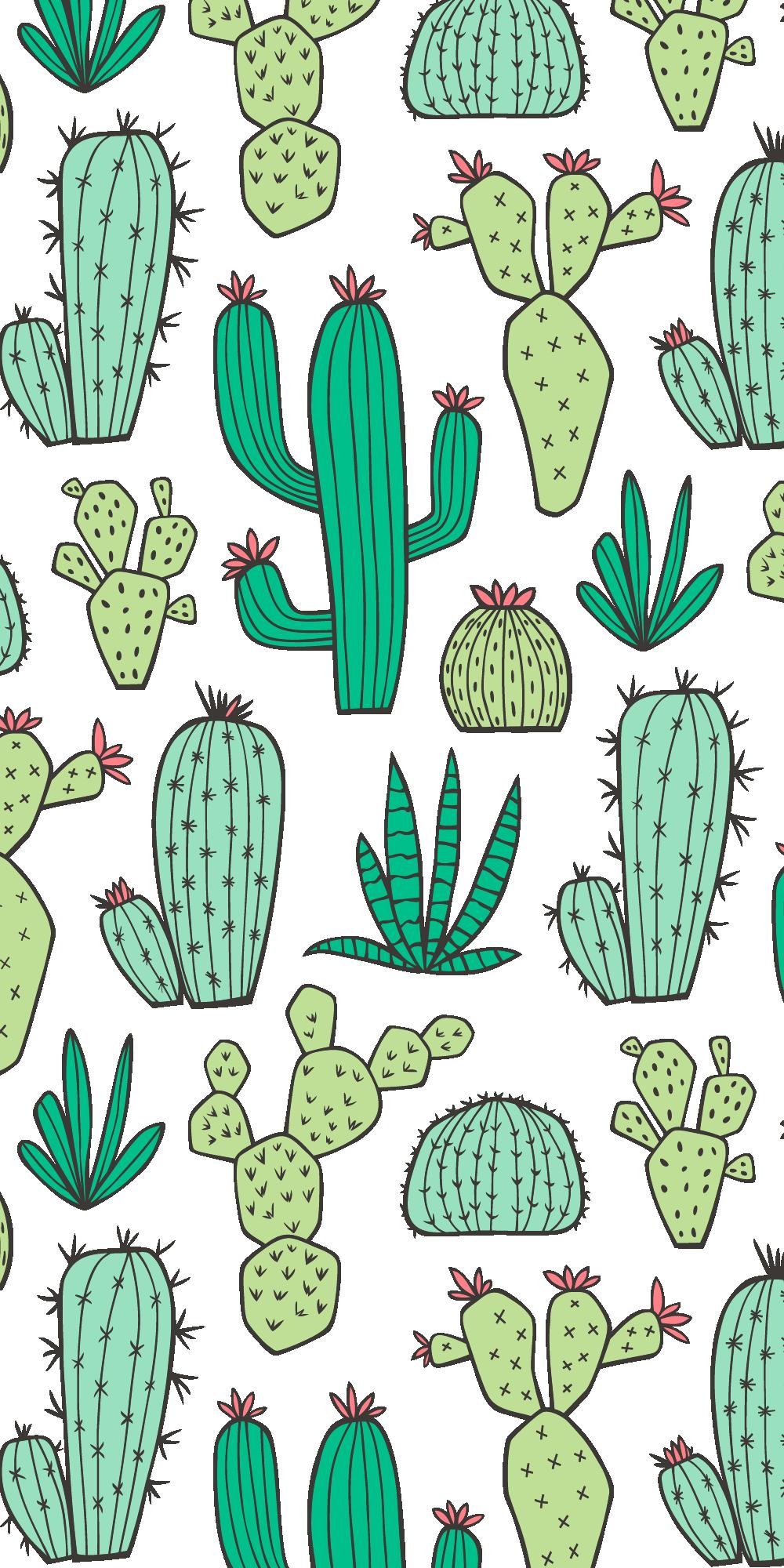 Iphone 7 Plus Cases Cactus - HD Wallpaper