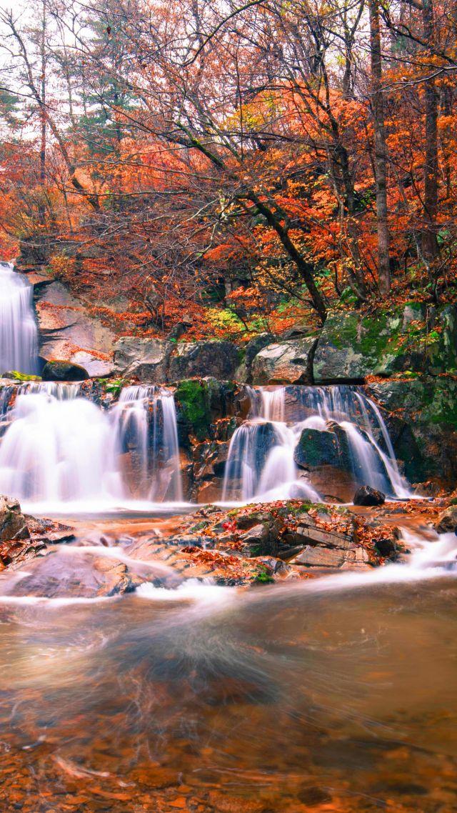 Waterfall Autumn 5k Nature Vertical Nature Waterfall Wallpaper Hd 640x1138 Wallpaper Teahub Io