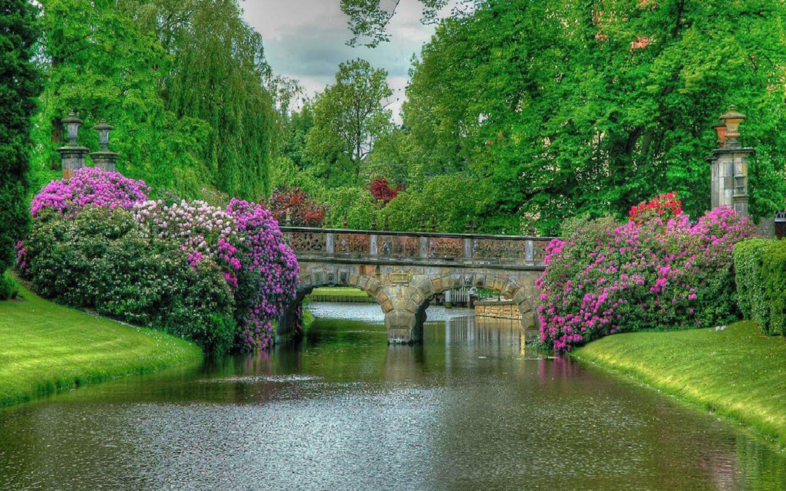 Beautiful Nature Wallpaper Hd - Most Beautiful Nature Scenery World - HD Wallpaper