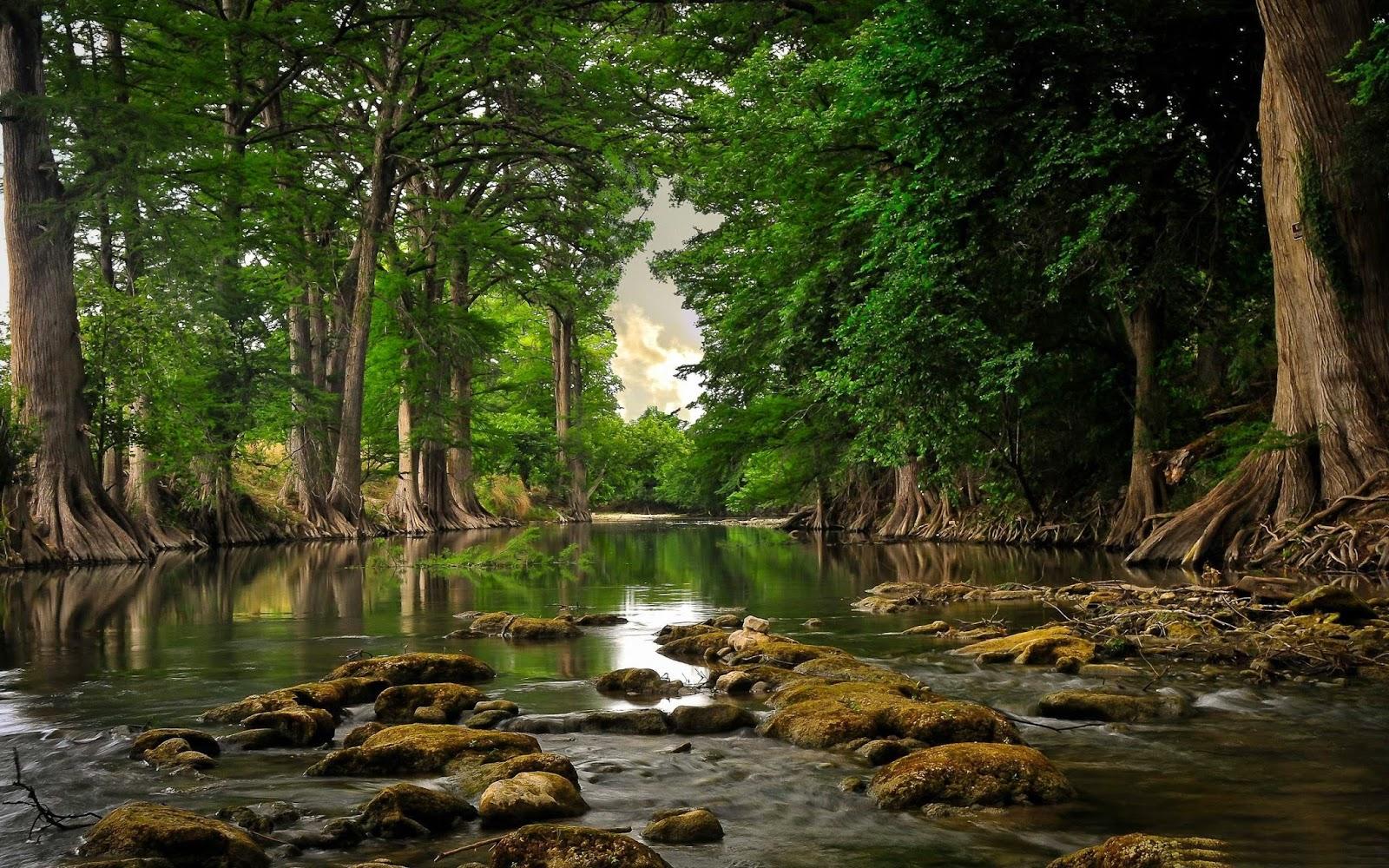 River Landscape Photography - HD Wallpaper