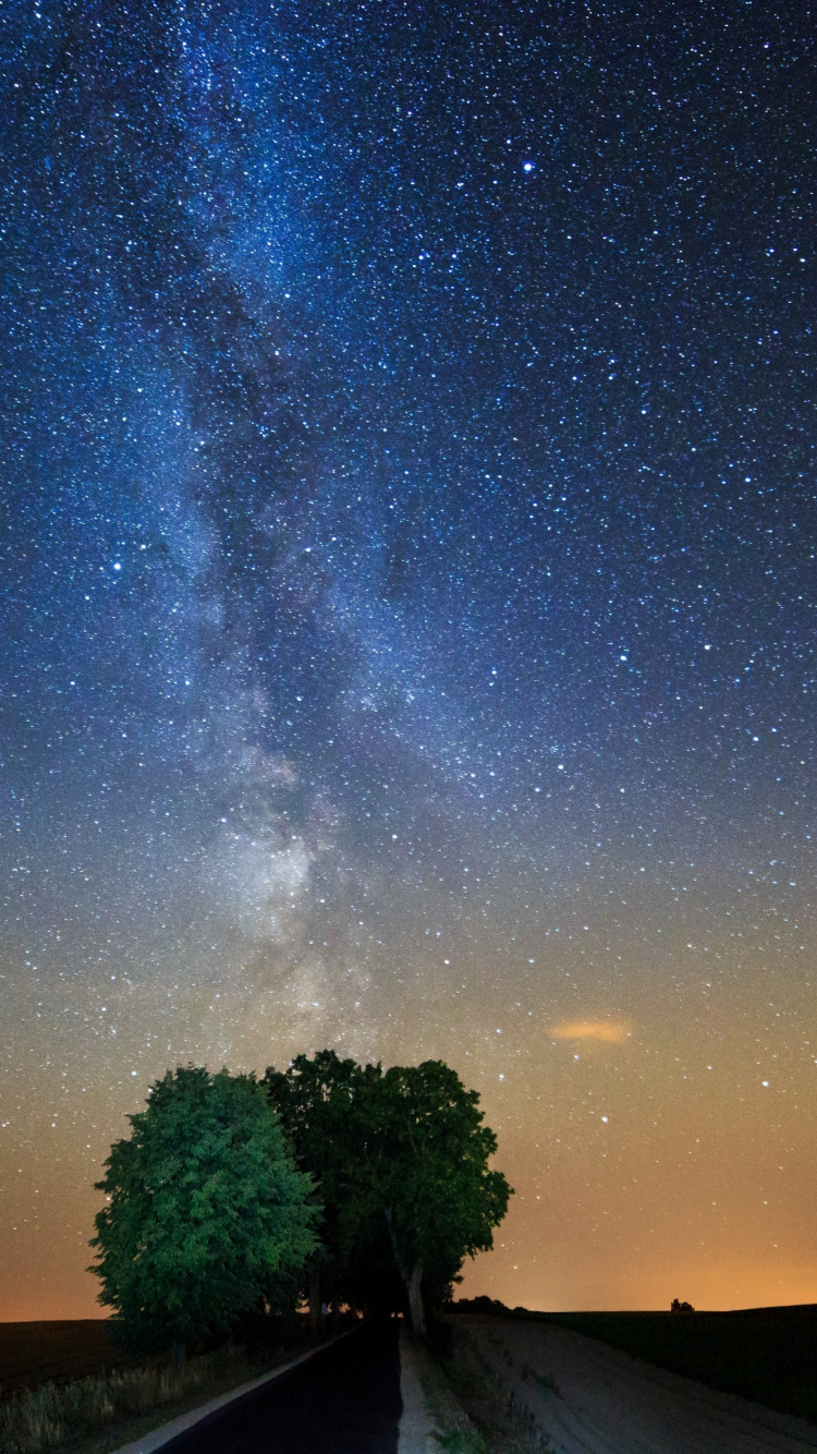 225 2254925 tree night milky way galaxy stars wallpaper s7