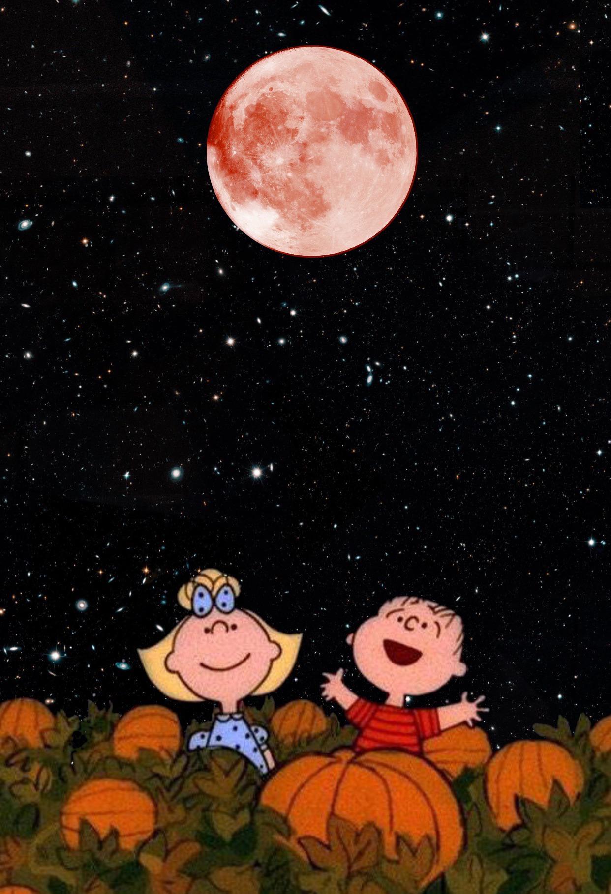 It's The Great Pumpkin Charlie - HD Wallpaper