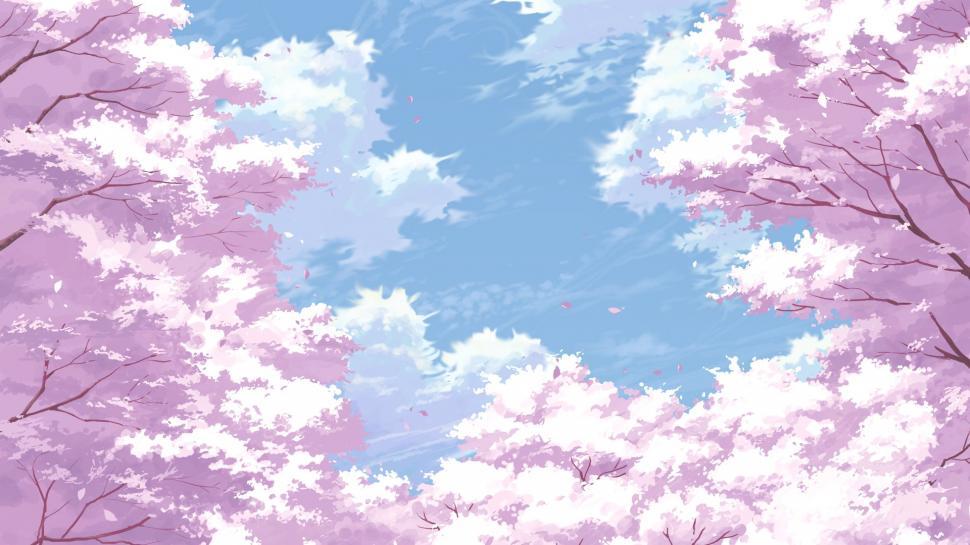 Cherry Blossom Flowers Painting Pink Wallpaper Cherry Anime Cherry Blossom Background 970x545 Wallpaper Teahub Io