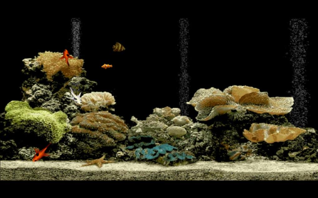 Free Aquarium Screensaver Live Wallpaper Hd Free Download 1020x636 Wallpaper Teahub Io