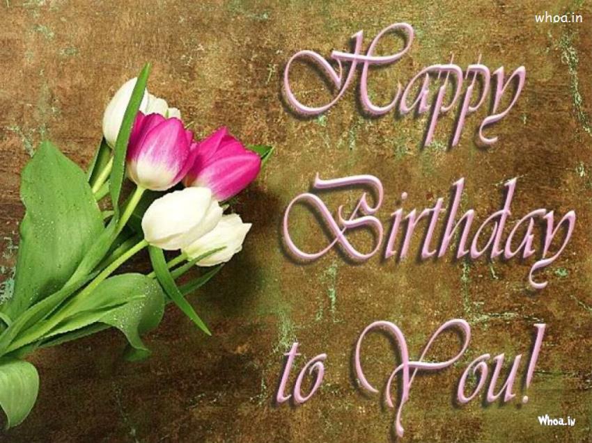 Happy Birthday Flower Hd Wallpaper Birthday Image Hd Flower 850x637 Wallpaper Teahub Io