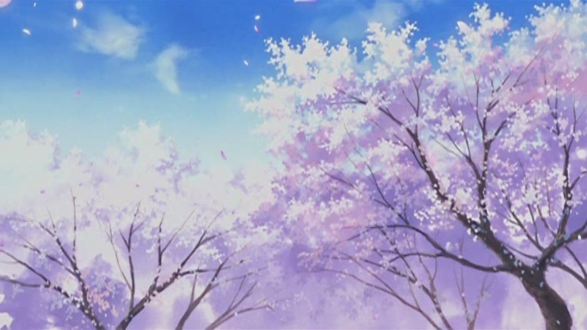 Pastel Aesthetic Anime Cherry Blossom Anime Scenery 1080x608 Wallpaper Teahub Io