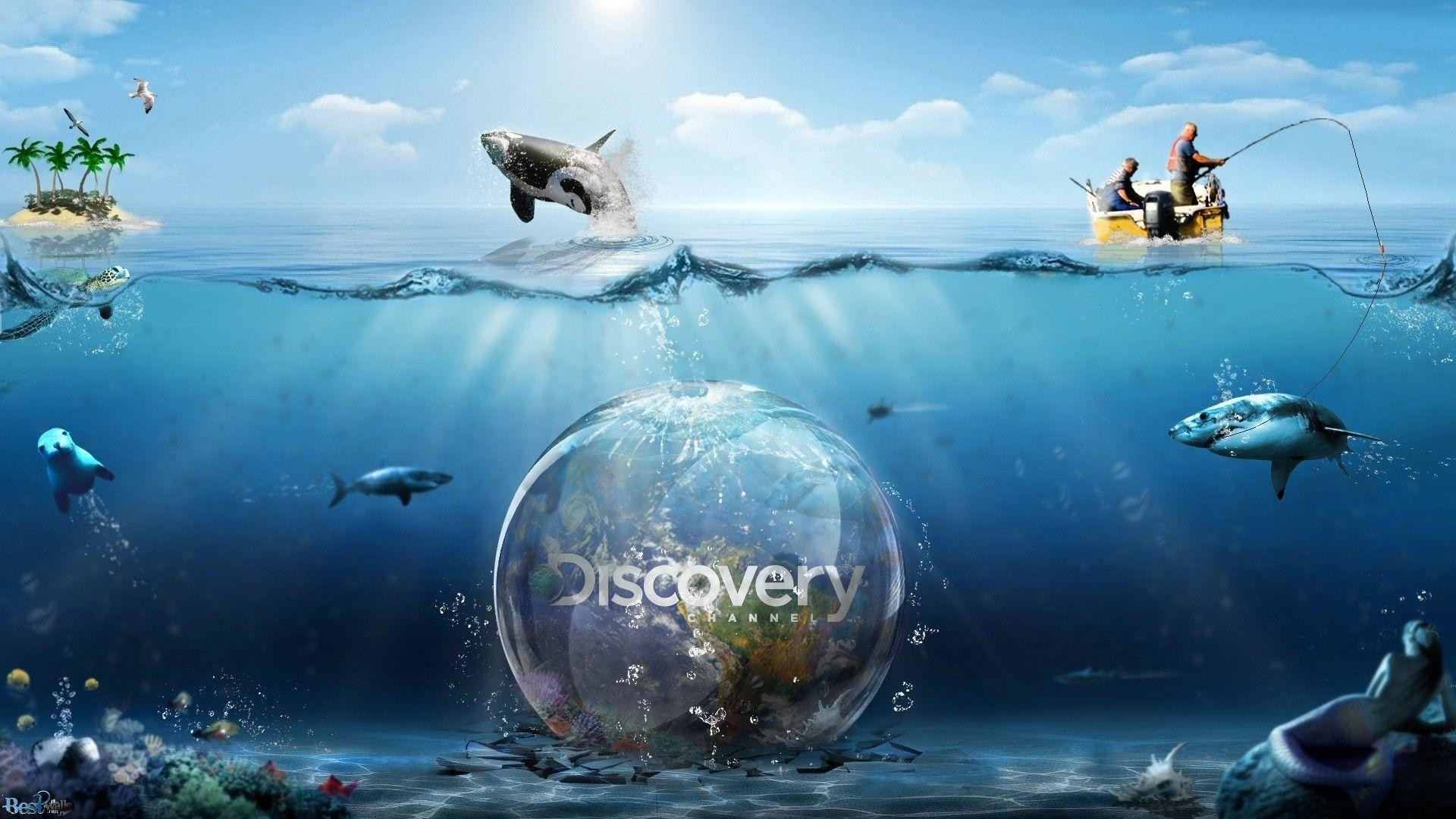 Wallpapers For > Discovery Channel Wallpaper   Data - Discovery Channel Art - HD Wallpaper