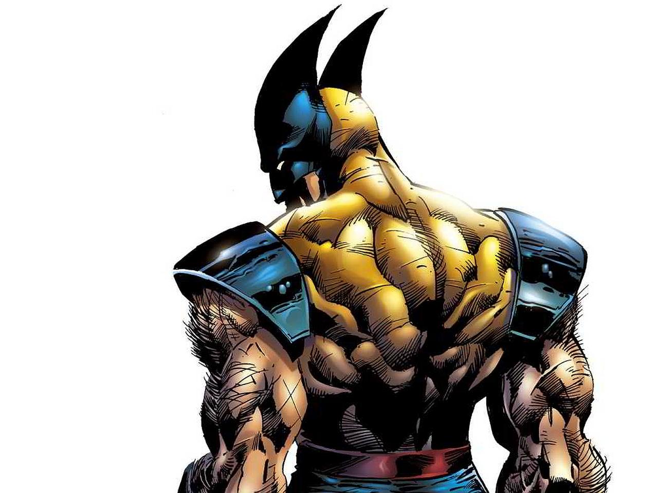 Wolverine X Men Art 1280x959 Wallpaper Teahub Io