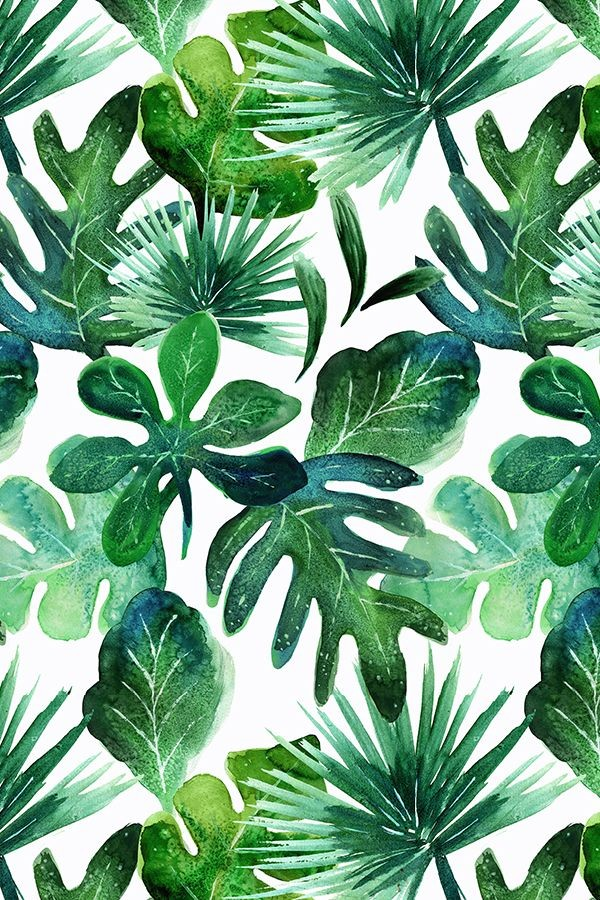 Tropical Leaves Wallpaper Watercolor Tropical Leaves 600x900 Wallpaper Teahub Io Lovepik provides 61000+ tropical leaves photos in hd resolution that updates everyday, you can free download for both personal and commerical use. tropical leaves wallpaper watercolor