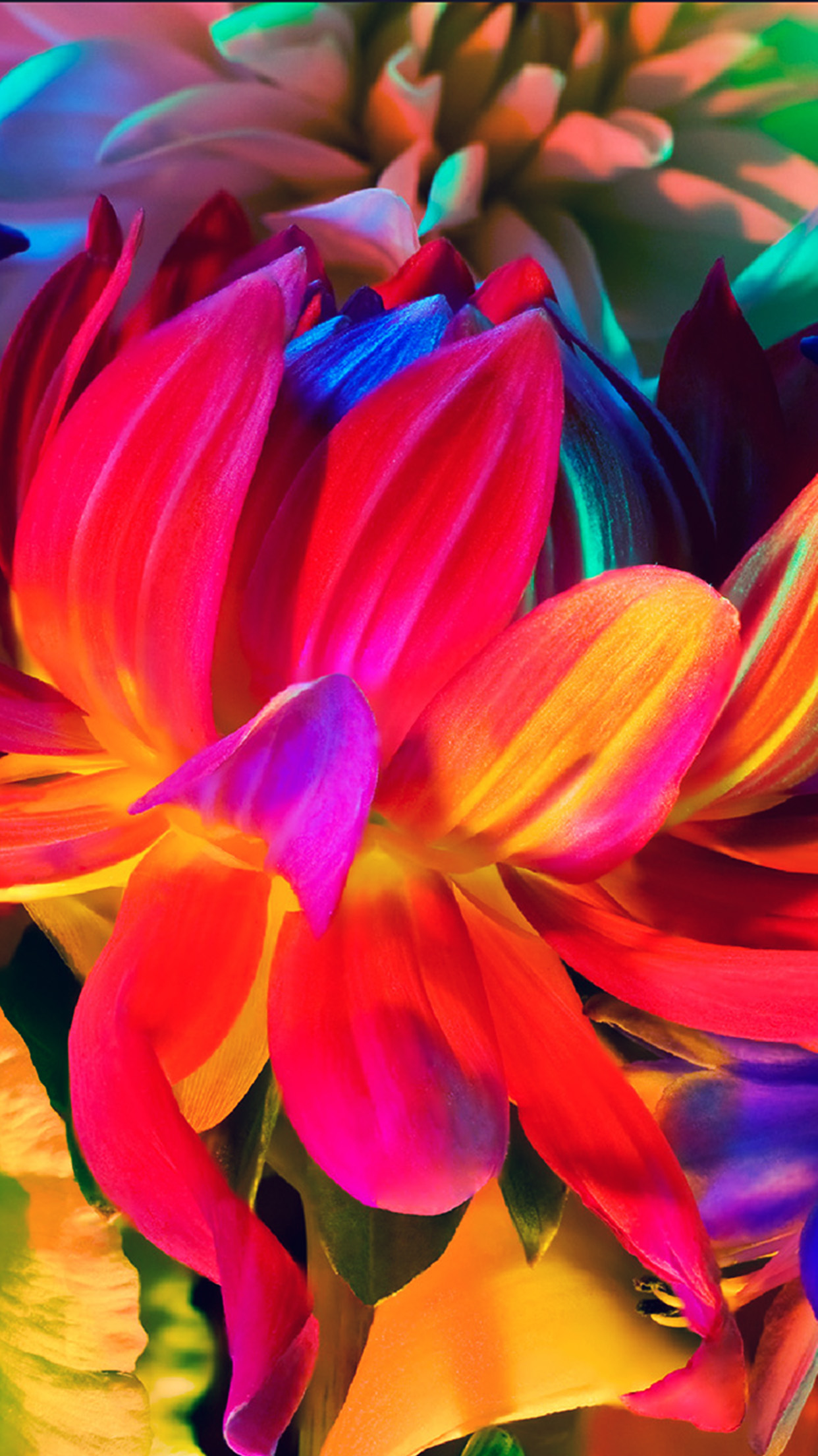 Apple Macbook Flower Rainbow Color Illustration Art - Show Color In Photography - HD Wallpaper