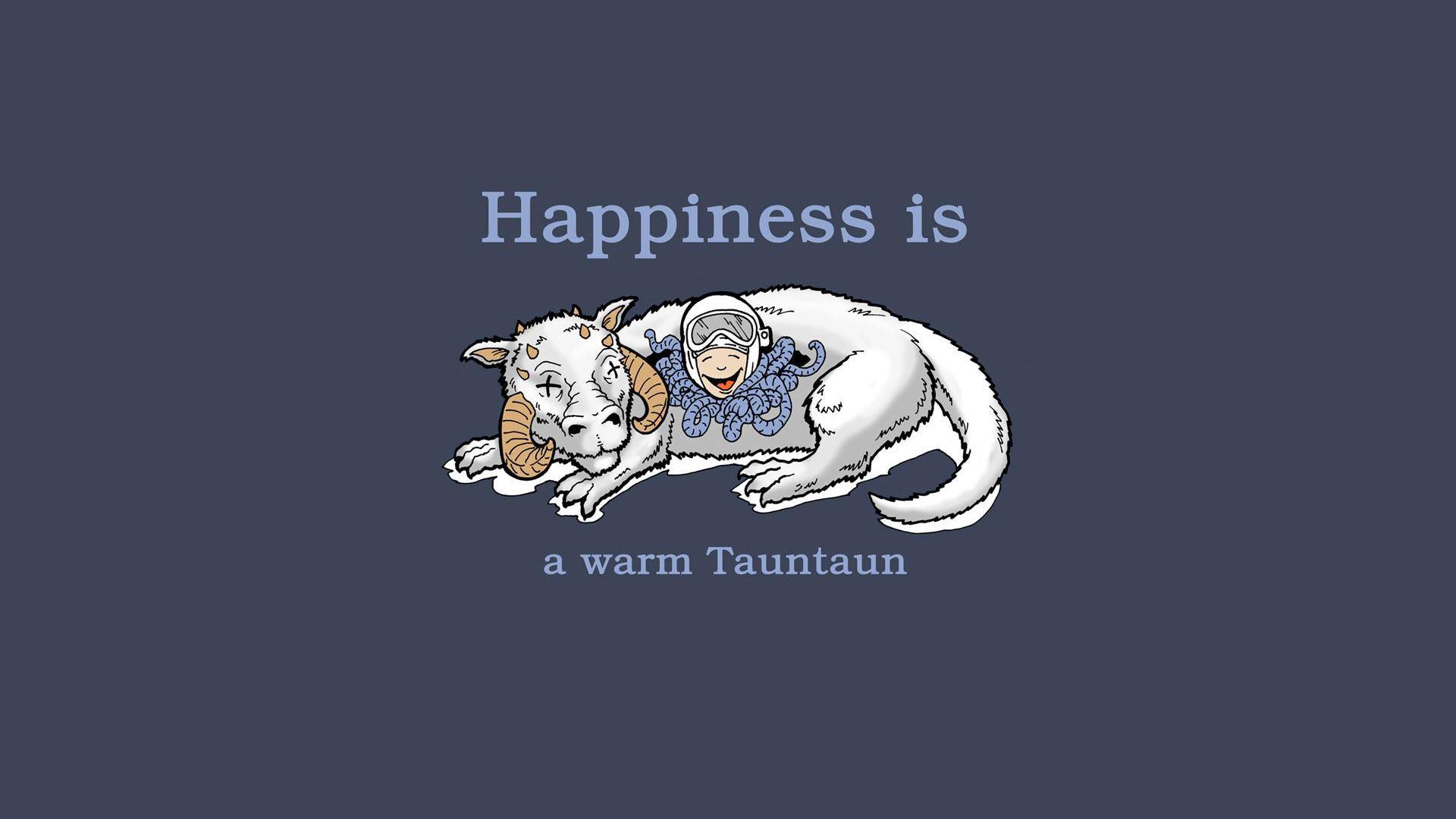 Star Wars Wallpapers Star Wars Tauntaun Shirt 1920x1080 Wallpaper Teahub Io