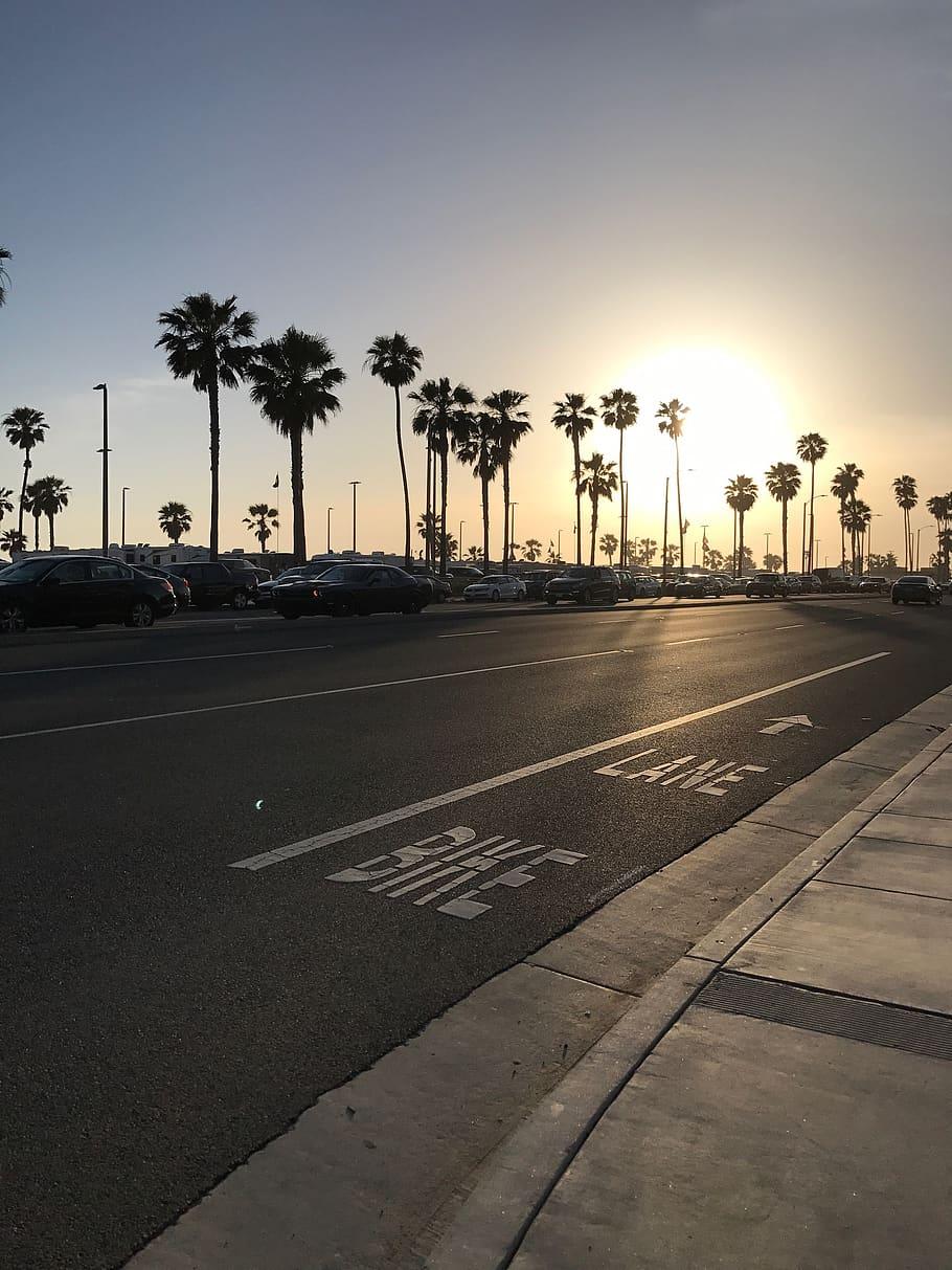 Sunset, Beach, Huntington Beach, Pch, Hey, Palm Trees, - Palm Road Tree Sunset - HD Wallpaper