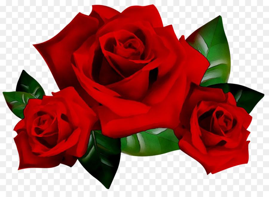 247 2473173 taman mawar desktop wallpaper desain bunga gambar rose