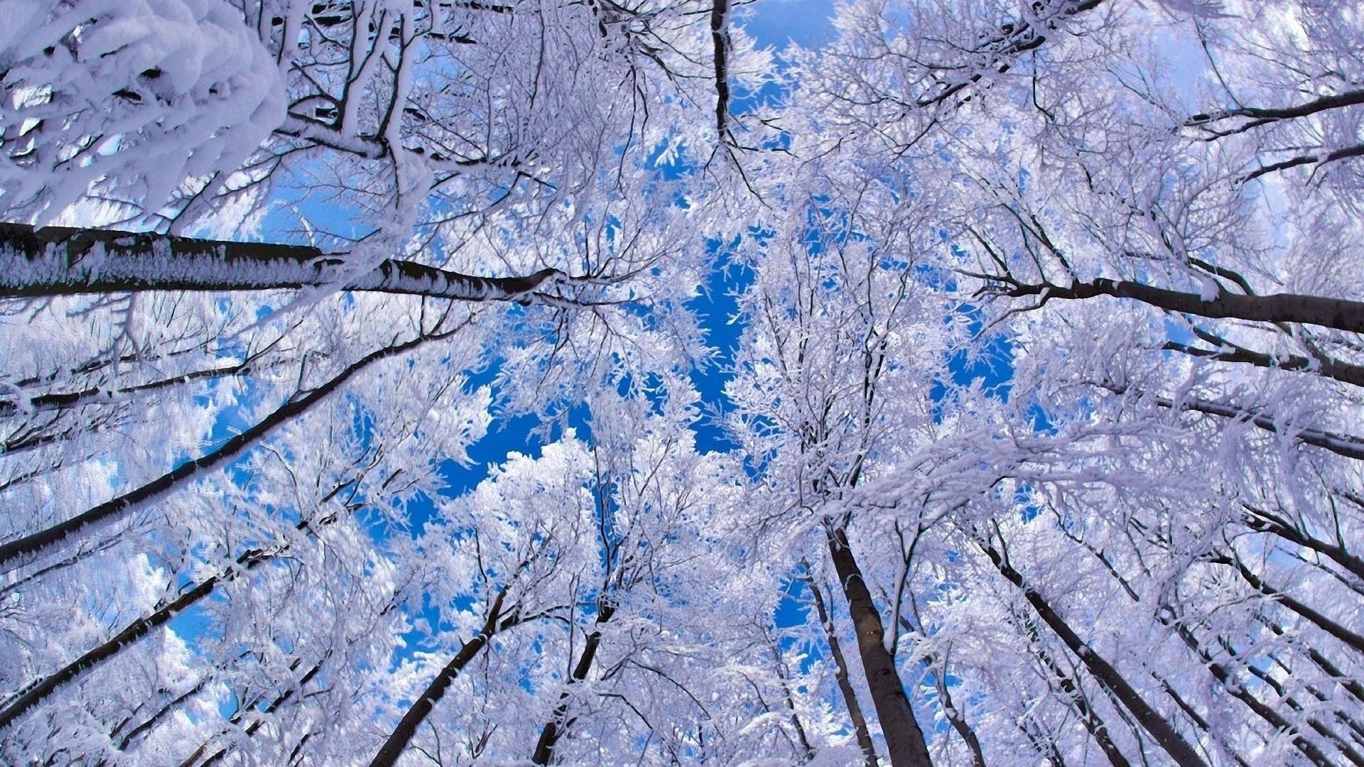 Snow In Baku And Districts - Winter Wallpaper Mac - HD Wallpaper