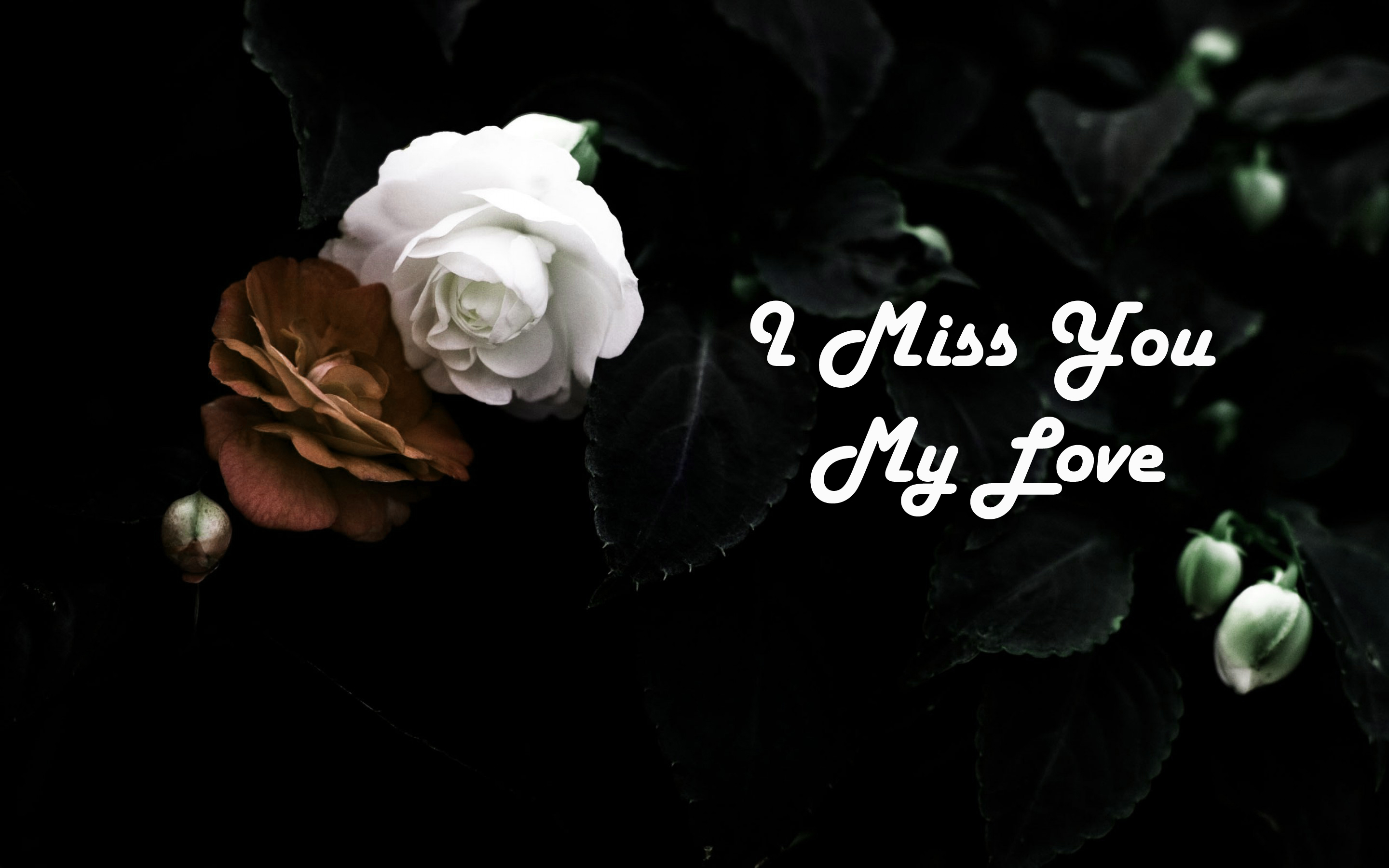 I Miss You My Love Wide Wallpapers And Backgrounds - Dark
