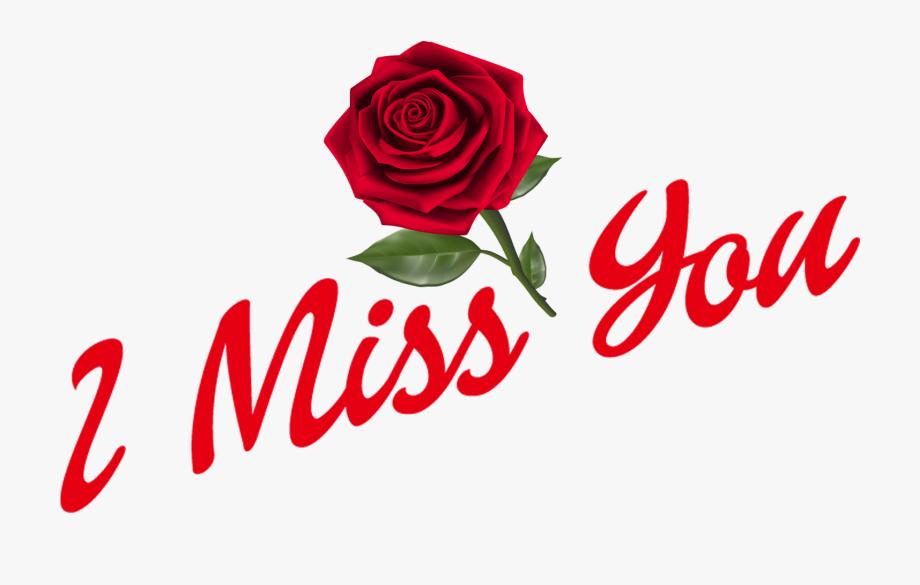 Weird Missing You Clipart Transparent Download I Miss Floribunda 920x585 Wallpaper Teahub Io