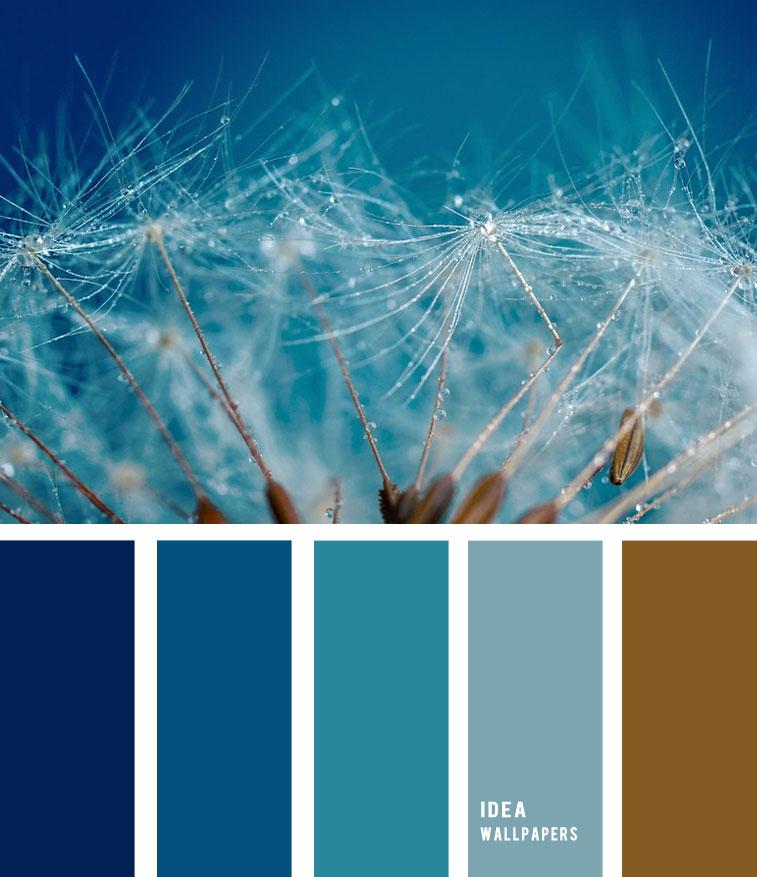 Seeds Color Palette Brown - HD Wallpaper