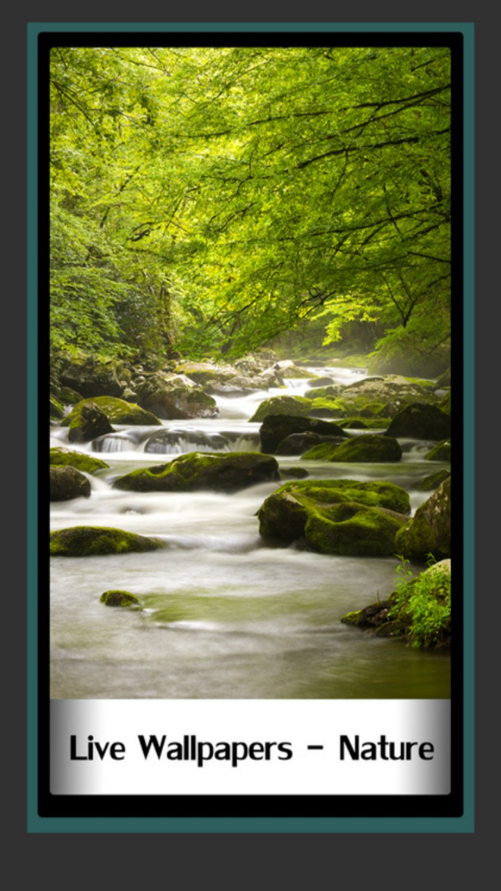 Live Wallpapers - Nature - Mountain Stream - HD Wallpaper