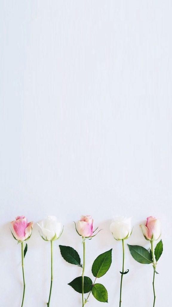 Mobile Wallpaper - Simple Floral Wallpaper Iphone - HD Wallpaper