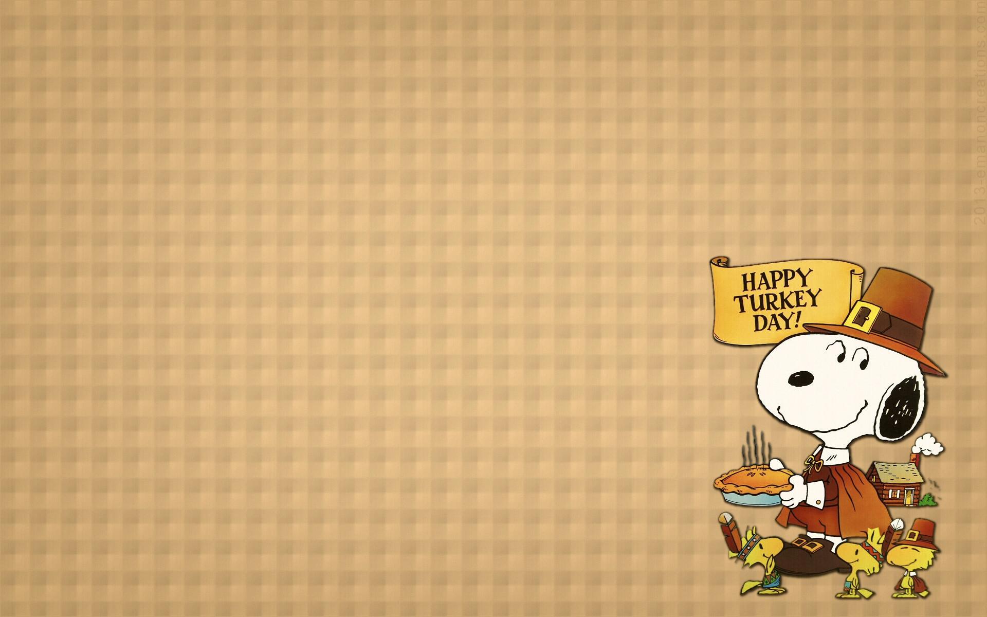 1920x1200, Res - Cute Thanksgiving Turkey Background - HD Wallpaper