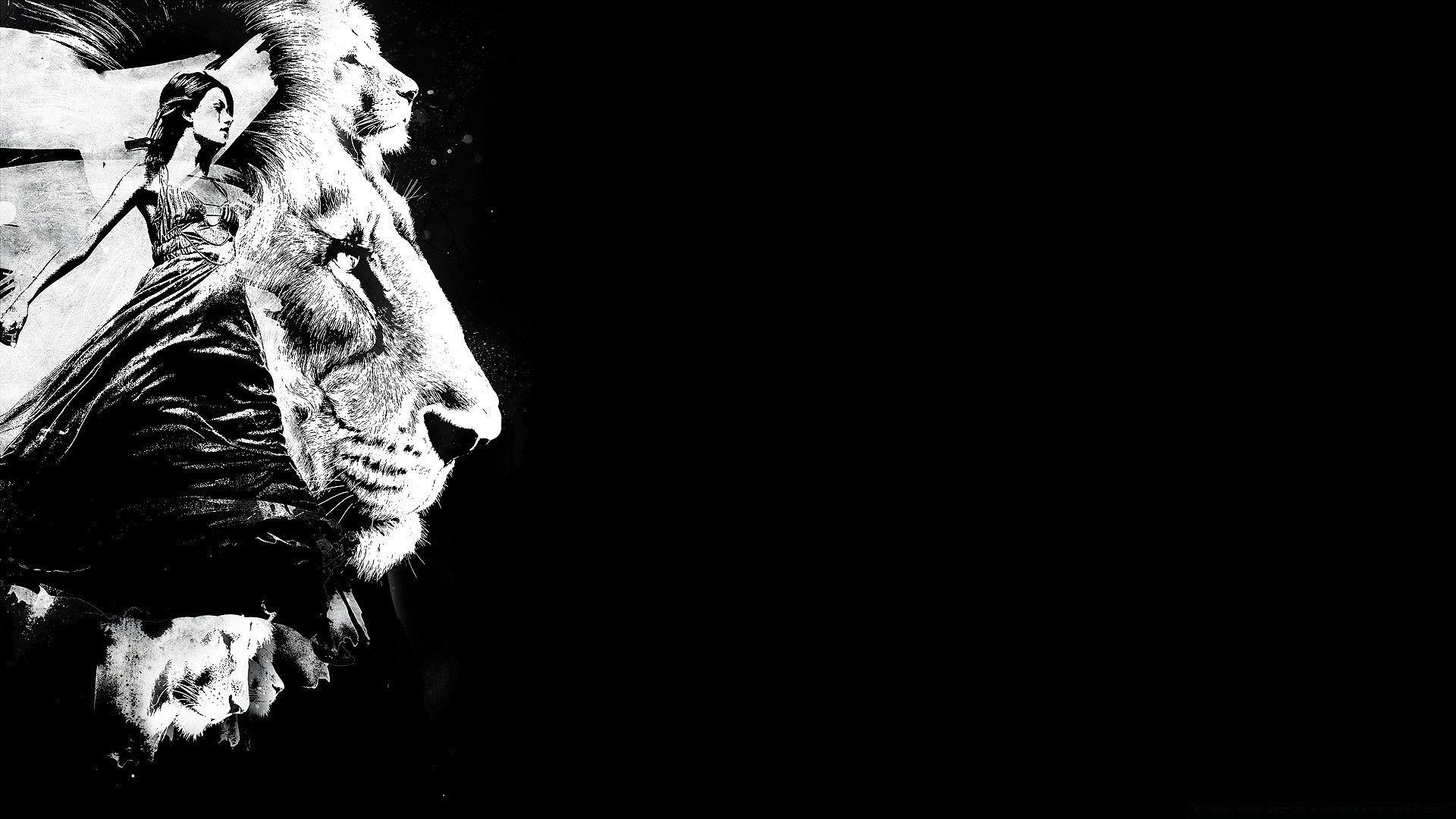 Lion Black And White Animal Wallpaper And Themes Lion Black And White 1920x1080 Wallpaper Teahub Io