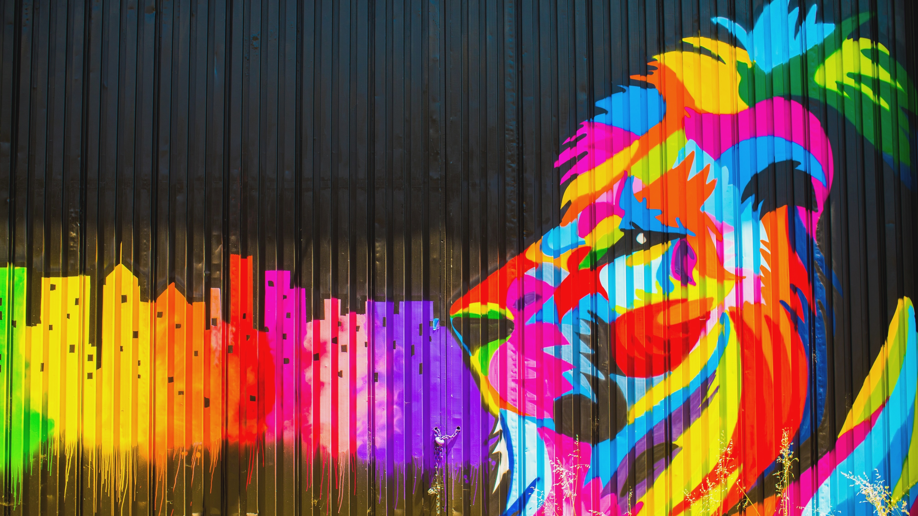 Colorful Lion New Mobile Wallpapers - Animals In Street Art Lions - HD Wallpaper