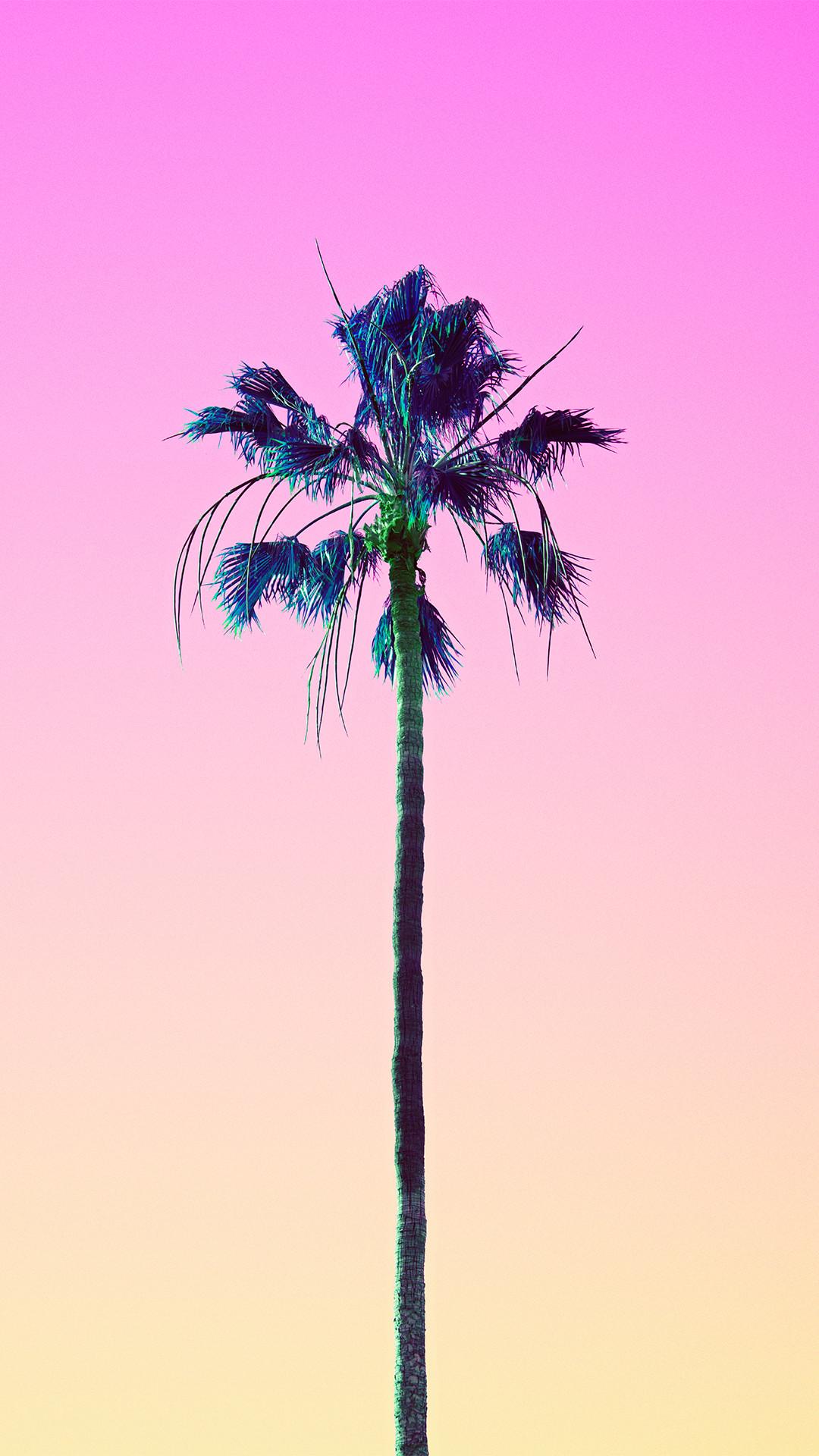 Data-src - Phone Backgrounds Palm Trees - HD Wallpaper