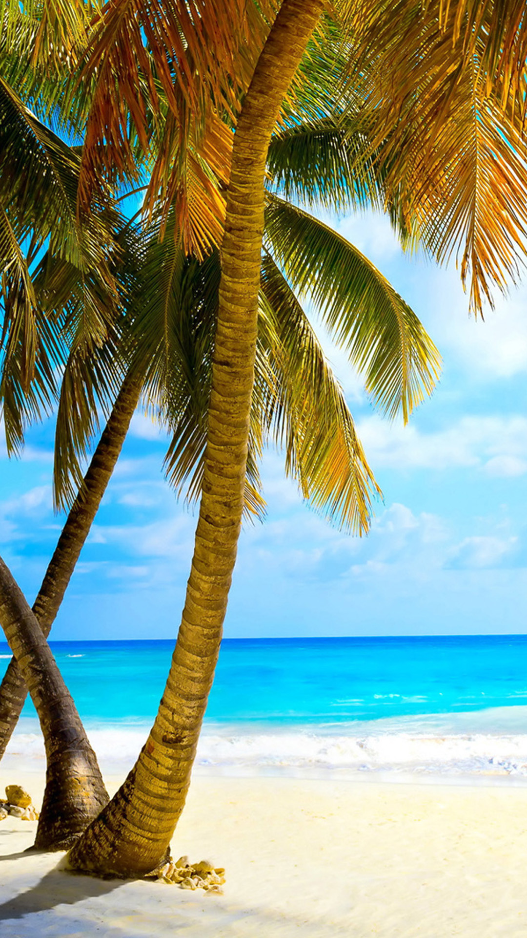 Download - Tropical Beach Wallpaper Phone - HD Wallpaper