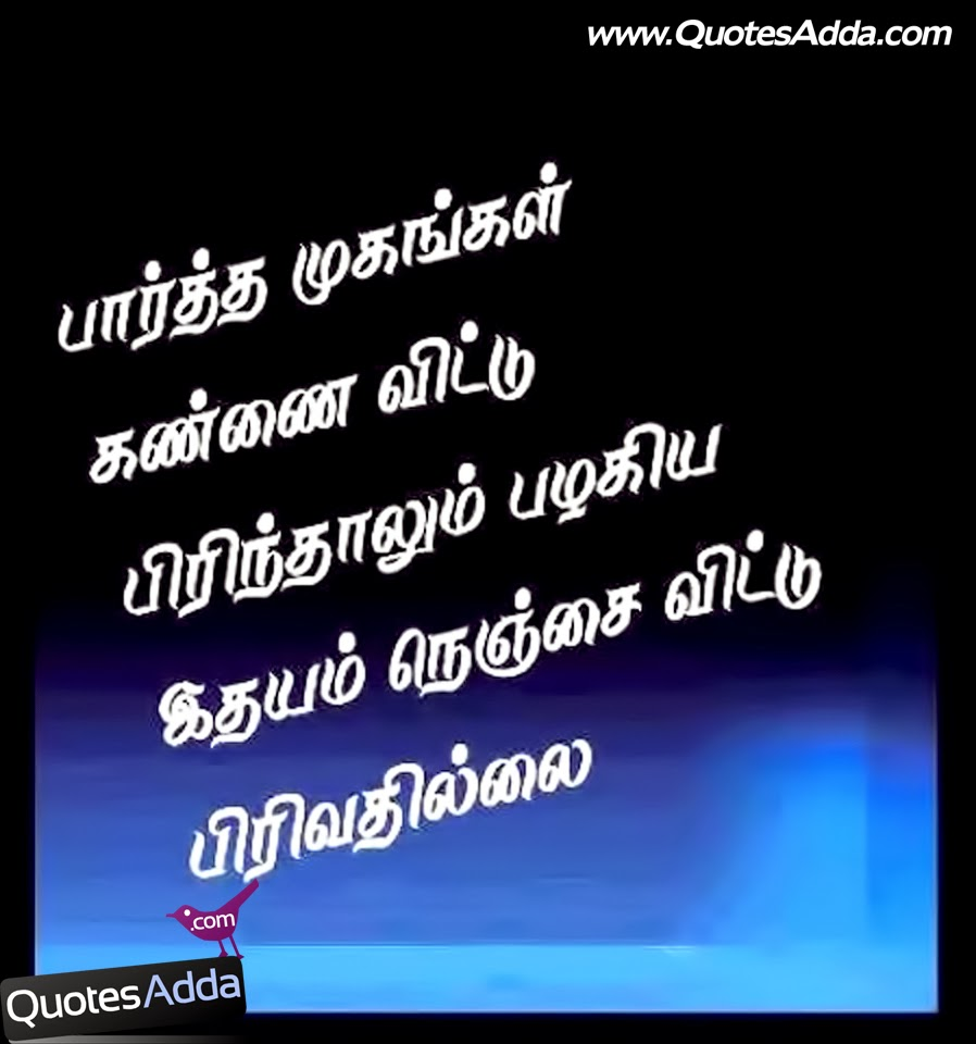 True Love Quotes In Tamil Tamil True Love Quotes Images Feeling Friendship Quotes In Tamil 898x960 Wallpaper Teahub Io So stay tuned our app and get the best tamil kavithai for you can set husband quotes in tamil hd walpaers of kanavan manaivi vaalkai valam pera. true love quotes in tamil tamil true